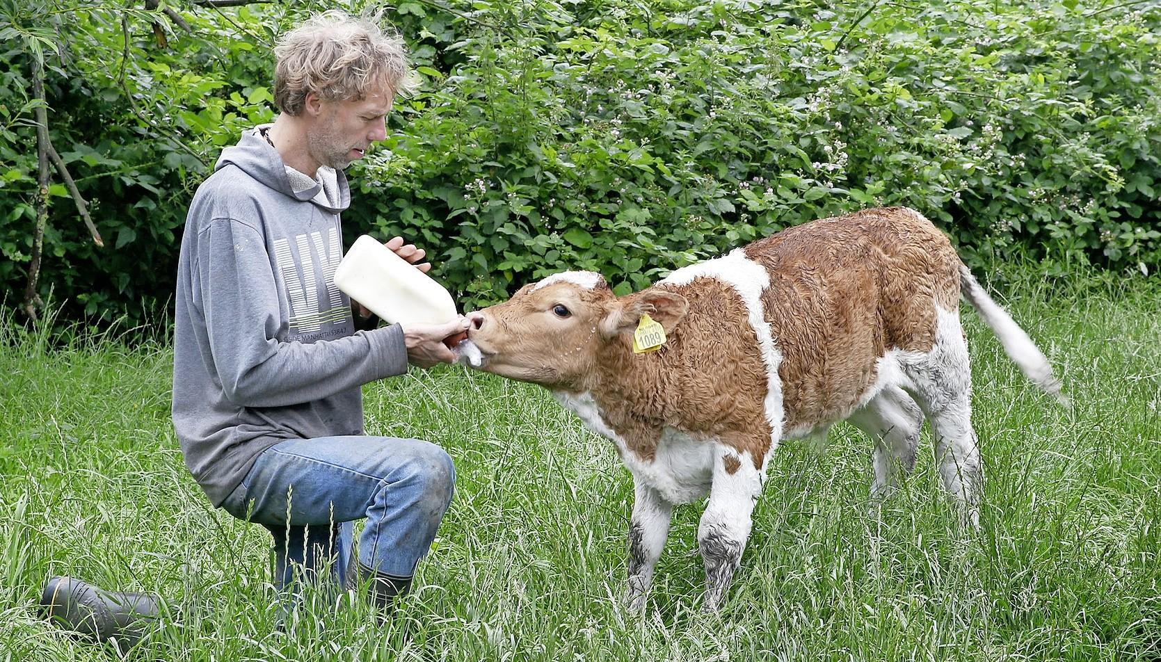 We kopen minder melk in de supermarkt, maar zuivel bij de boerderijwinkel vindt gretig aftrek