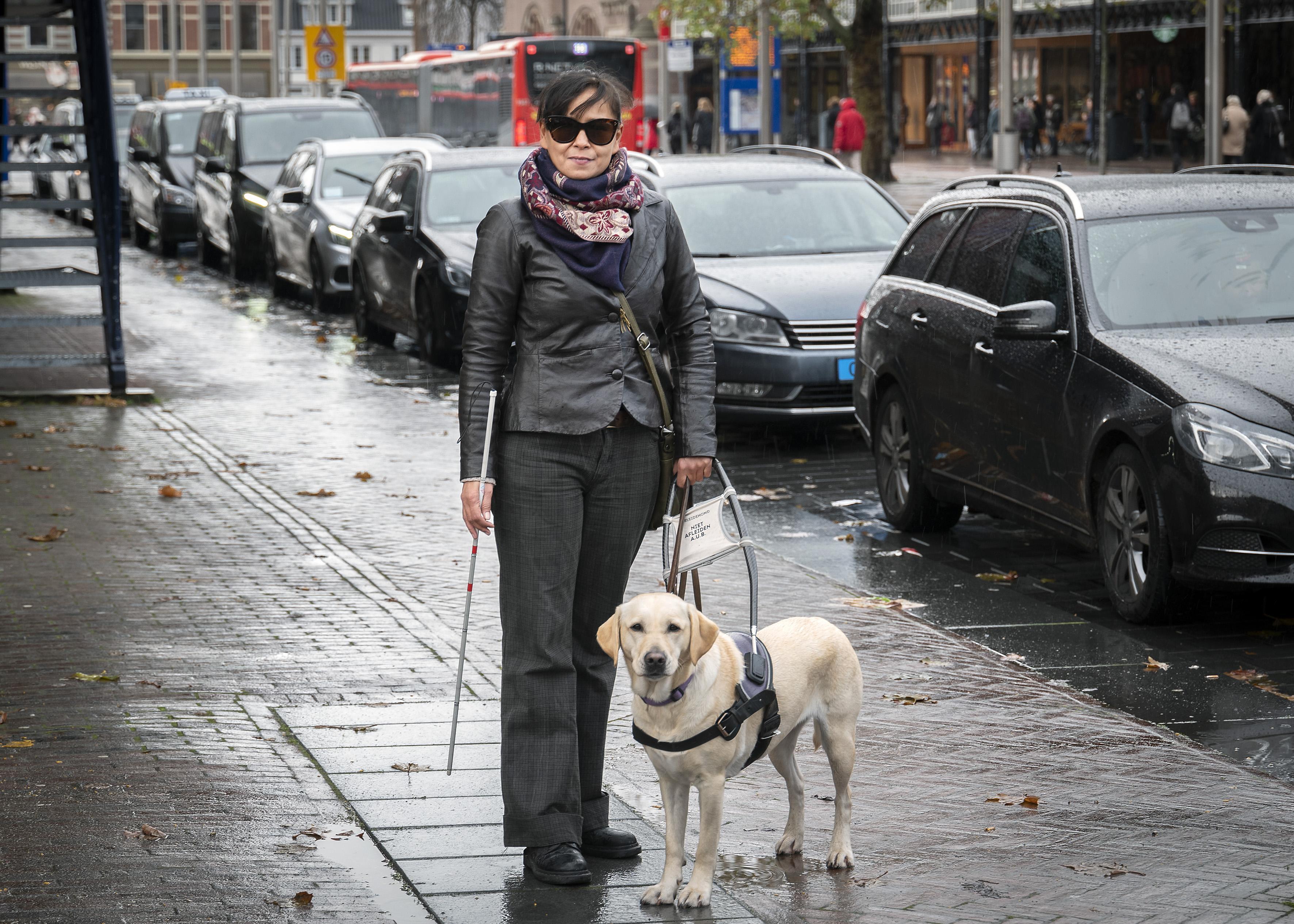 Taxi's weigeren hulphond: Pauline van Heuven woedend nadat vijf taxi's op het stationsplein in Haarlem haar in de kou laten staan