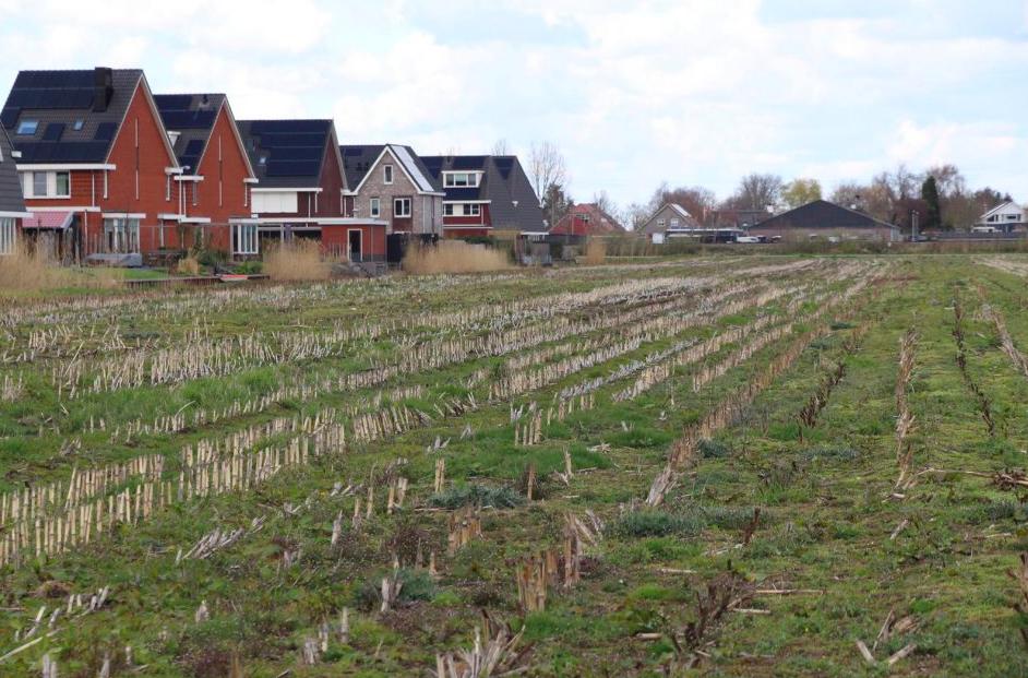 Vegaboerderij verhuist noodgedwongen van Boskoop naar Bodegraven