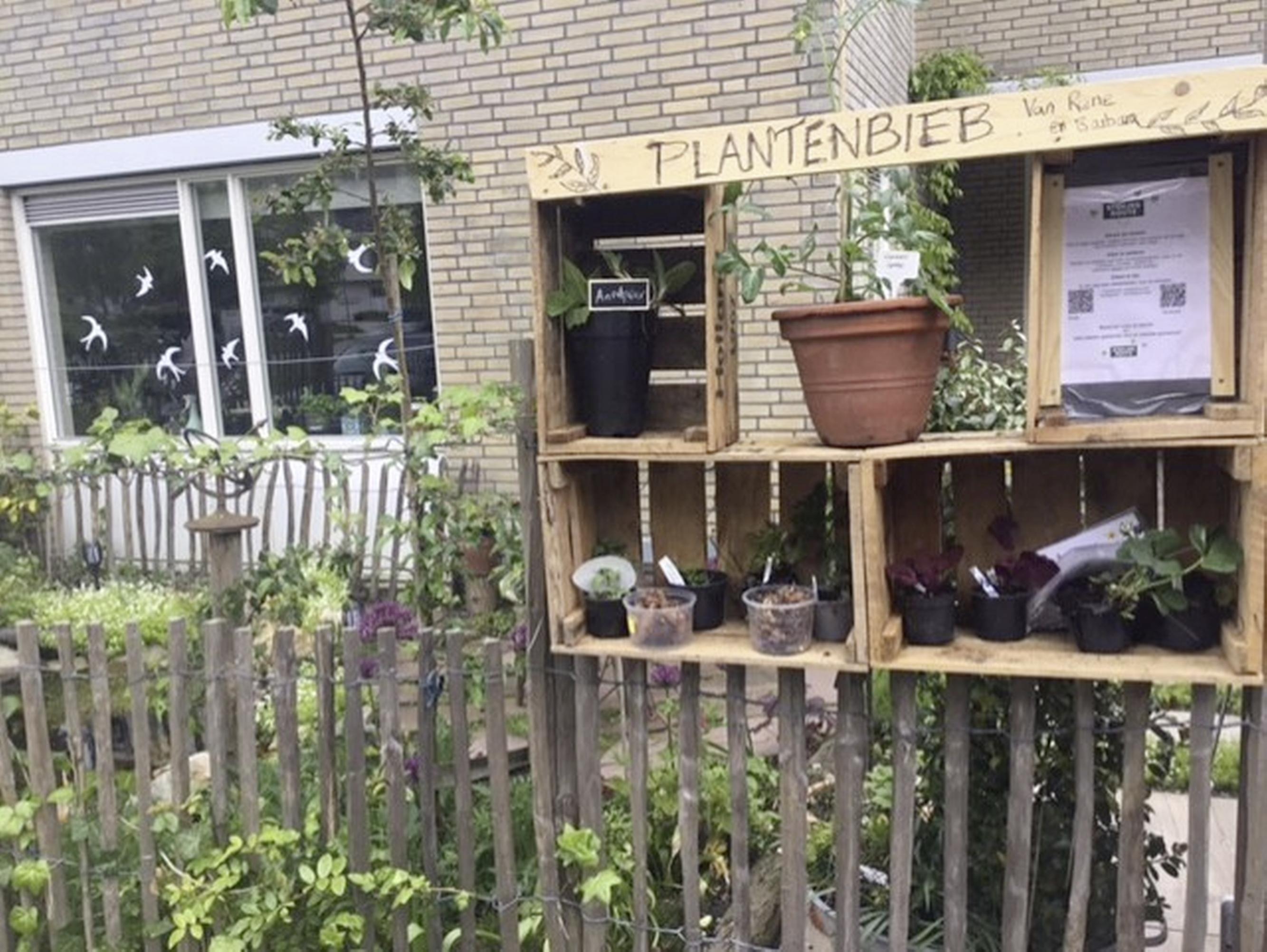 De eerste Heemsteedse plantjesbieb van René en Barbara zorgt voor verbroedering. 'Iedereen mag een stekje komen halen'