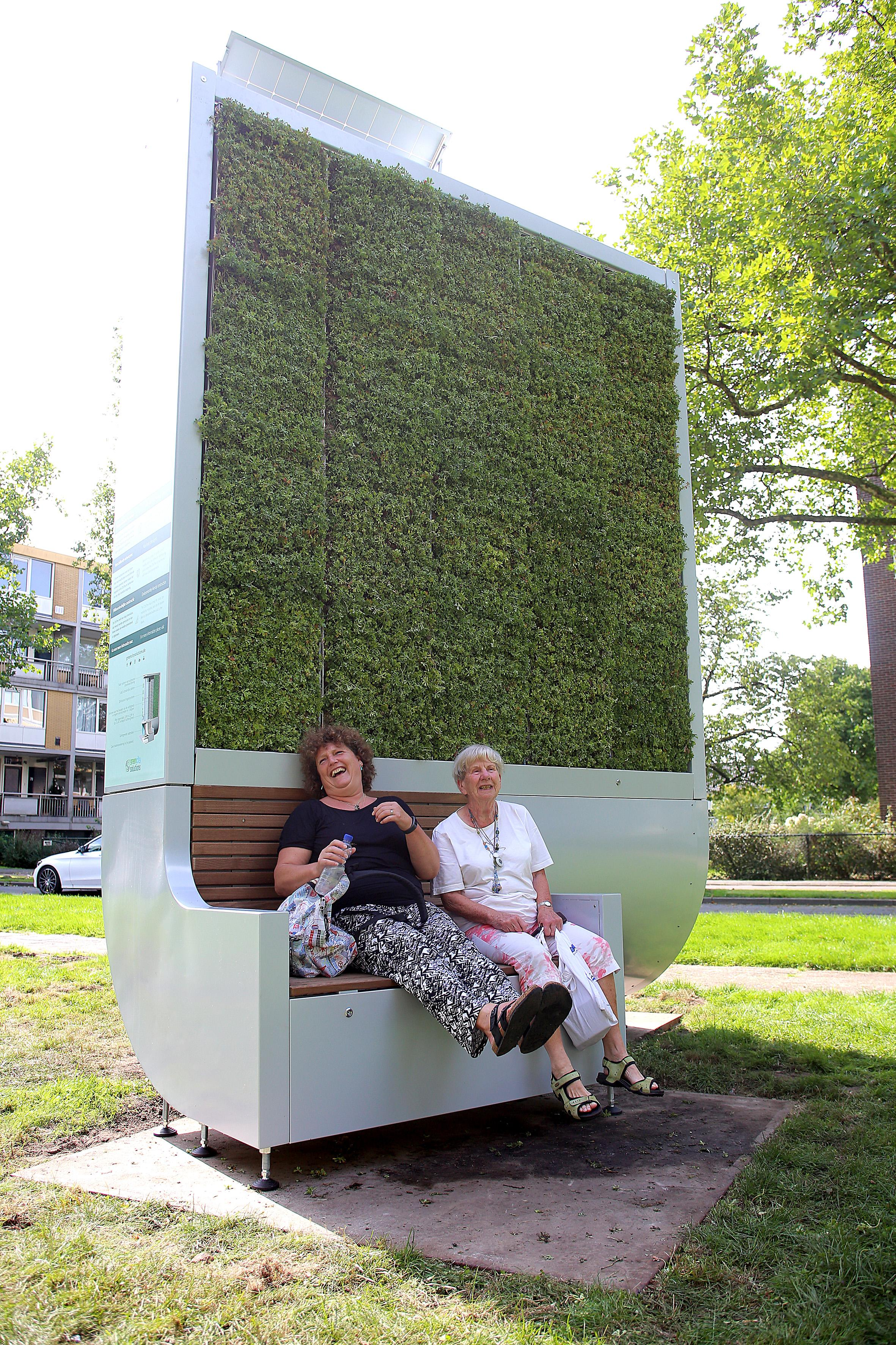 'Plaats grote moswand in Hoorn'