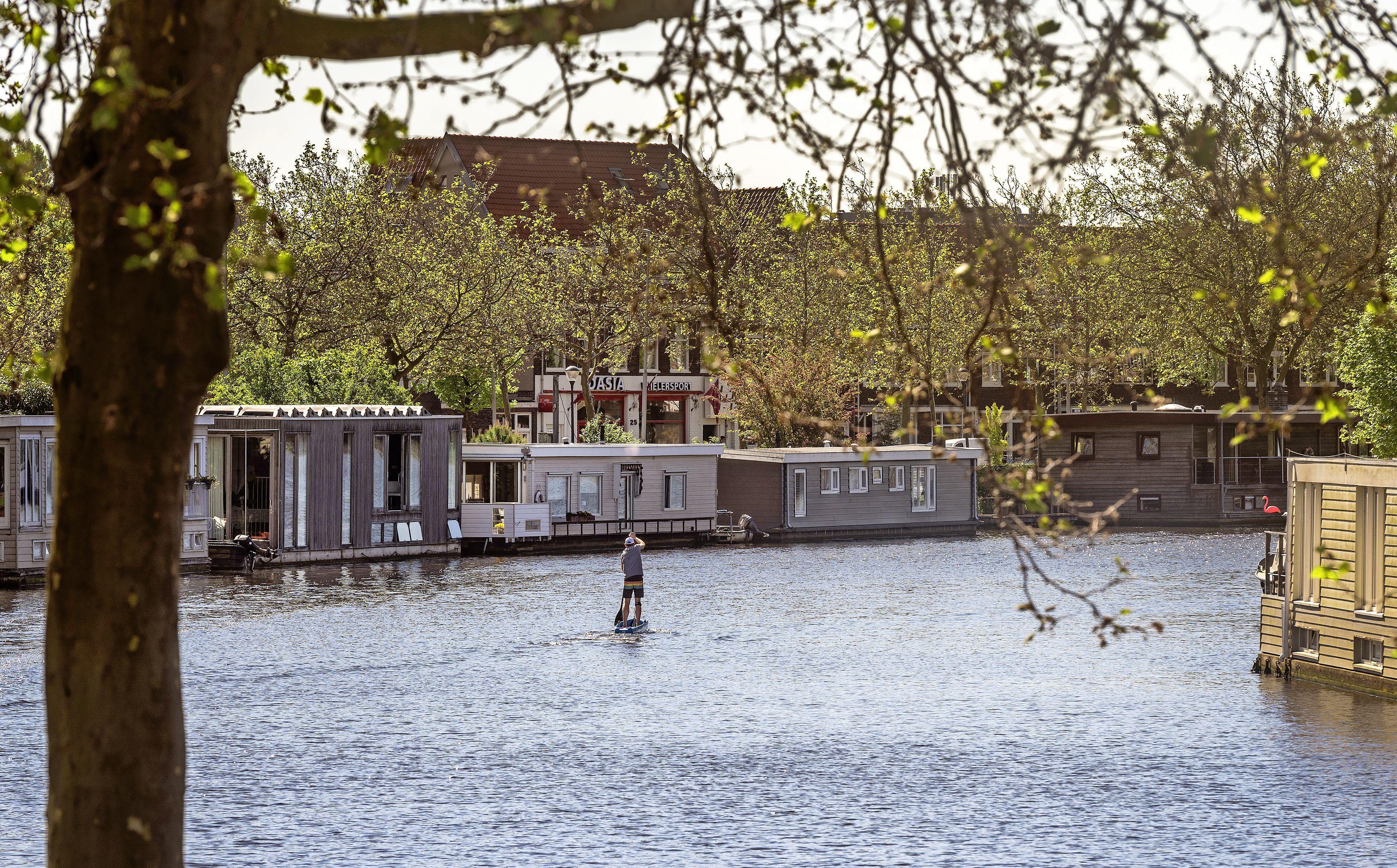 Opvallend helder water in de Haarlemse grachten: dit piepkleine organisme veroorzaakt het