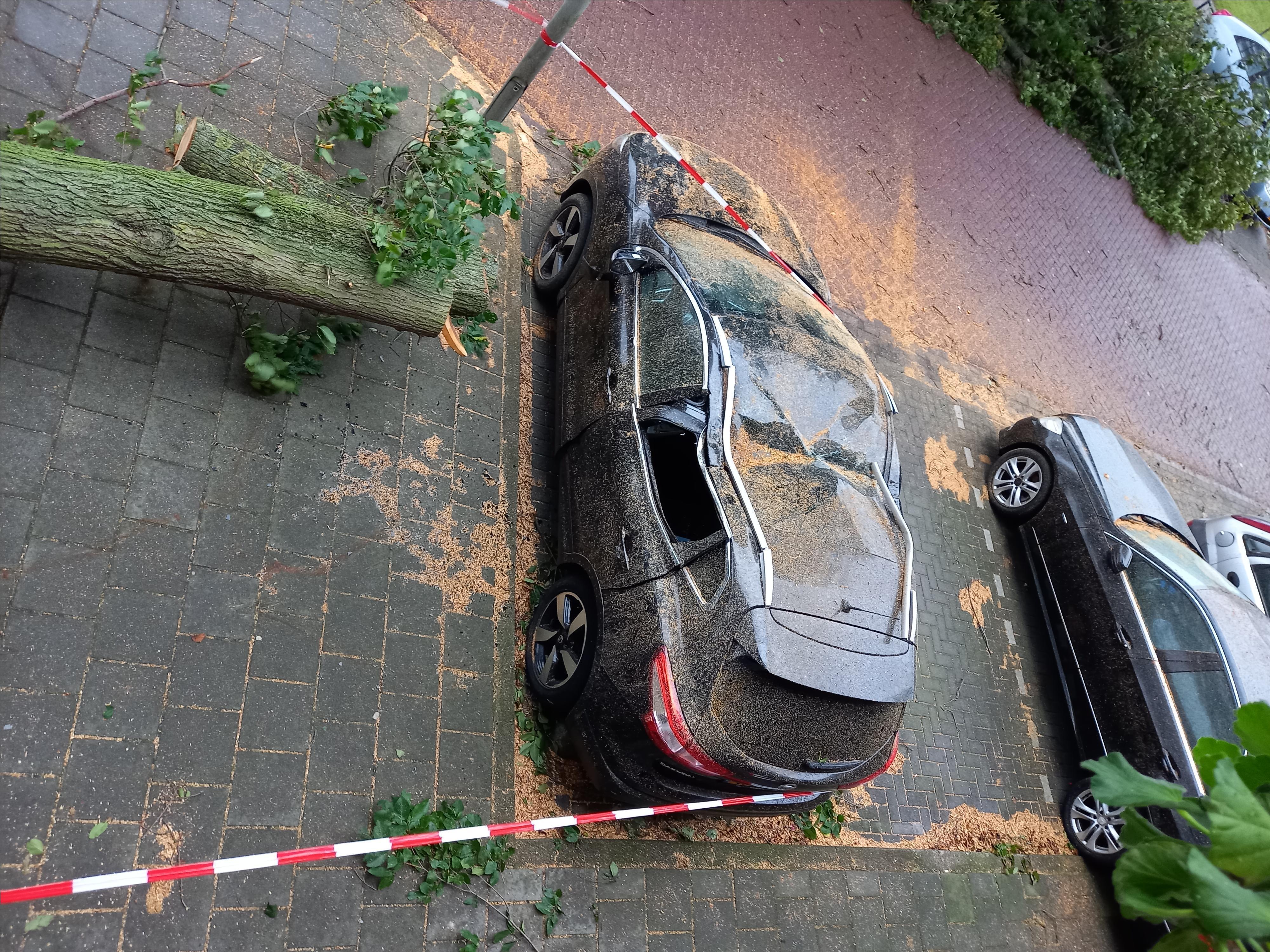 Francis plaaggeest voor eigenaar auto bij Georgebos in IJmuiden: zomerstorm veroorzaakt ook her en der in de IJmond schade