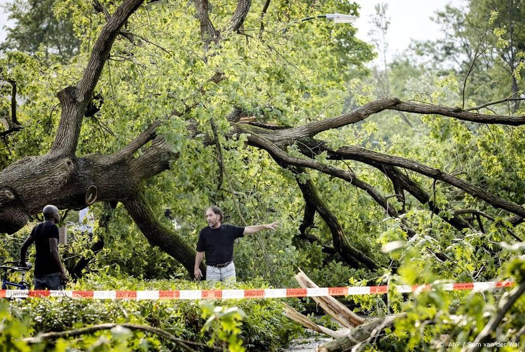 Staatsbosbeheer tevreden over effect dranghekken in bos Leersum