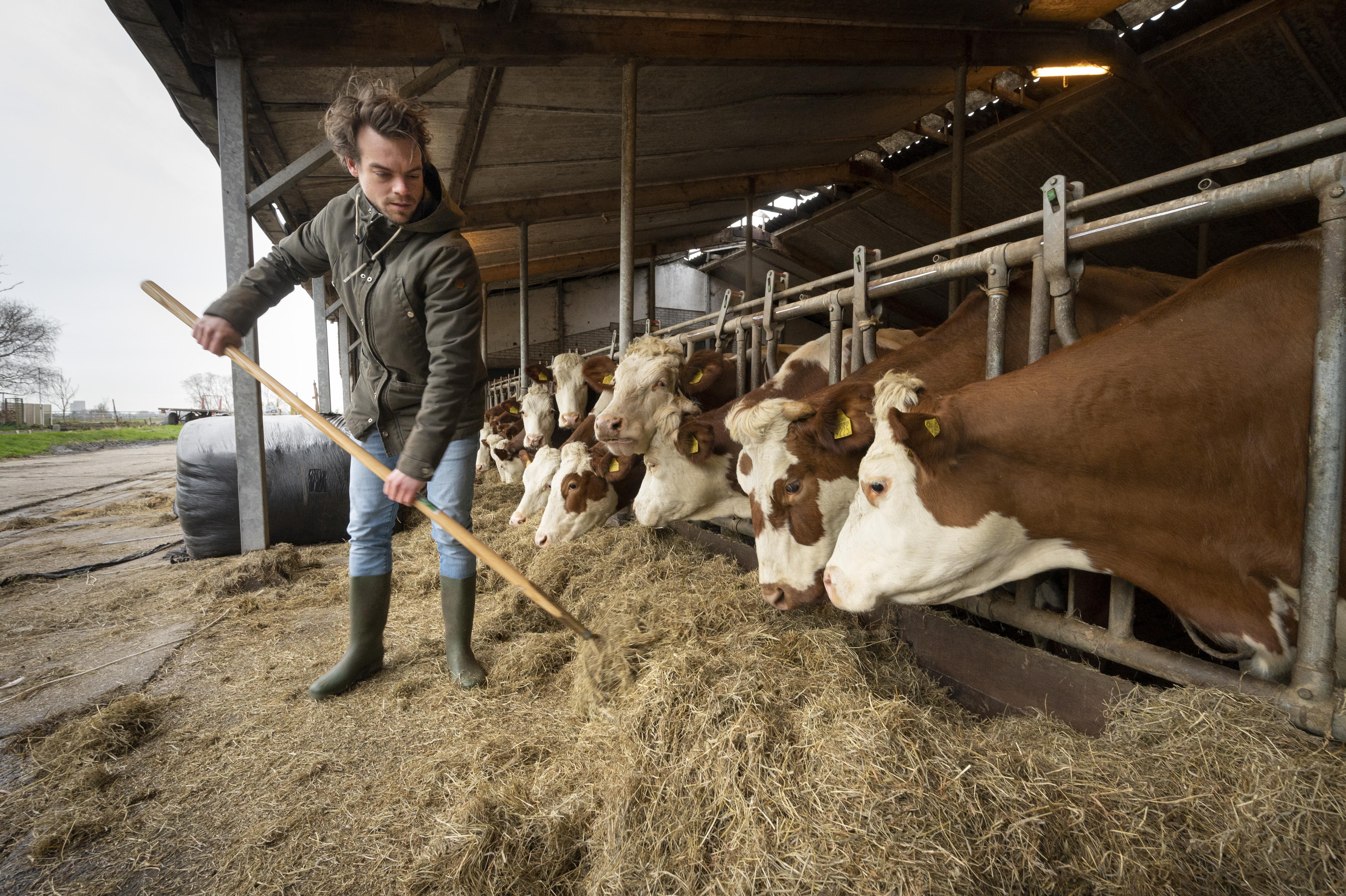 Het tijdperk van het boerenfamiliebedrijf loopt op zijn eind: ,,Stoppen op het juiste moment is ook een vorm van goed ondernemen''