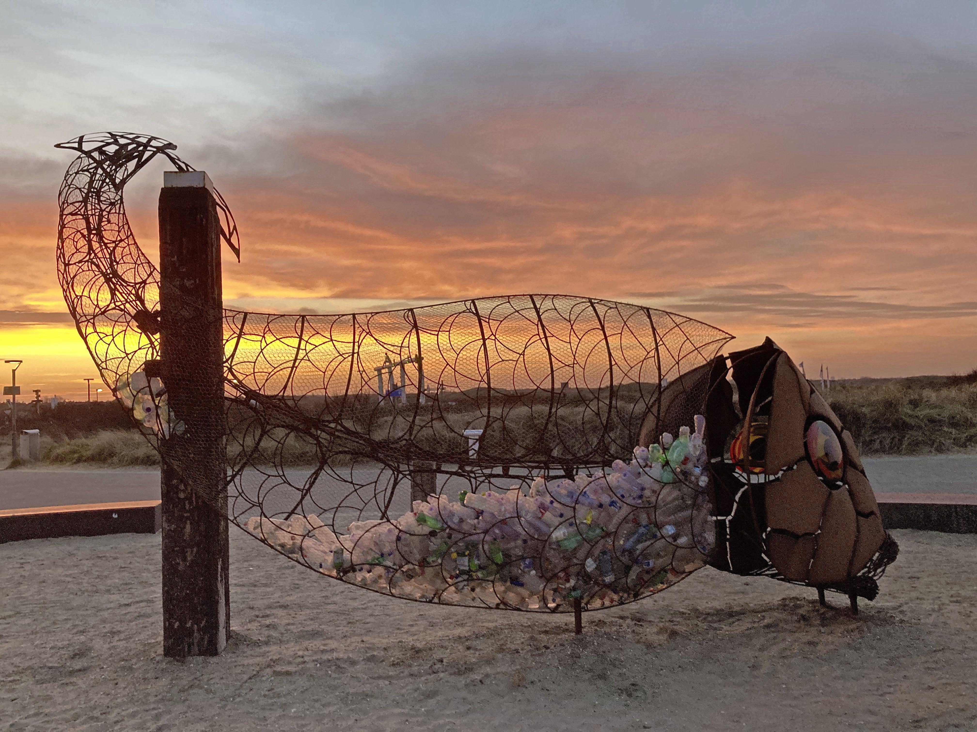 Reizend kunstwerk CatchFish verhuist van Castricum naar IJmuiden: 'Hij heeft zijn buik vol van plastic soep'