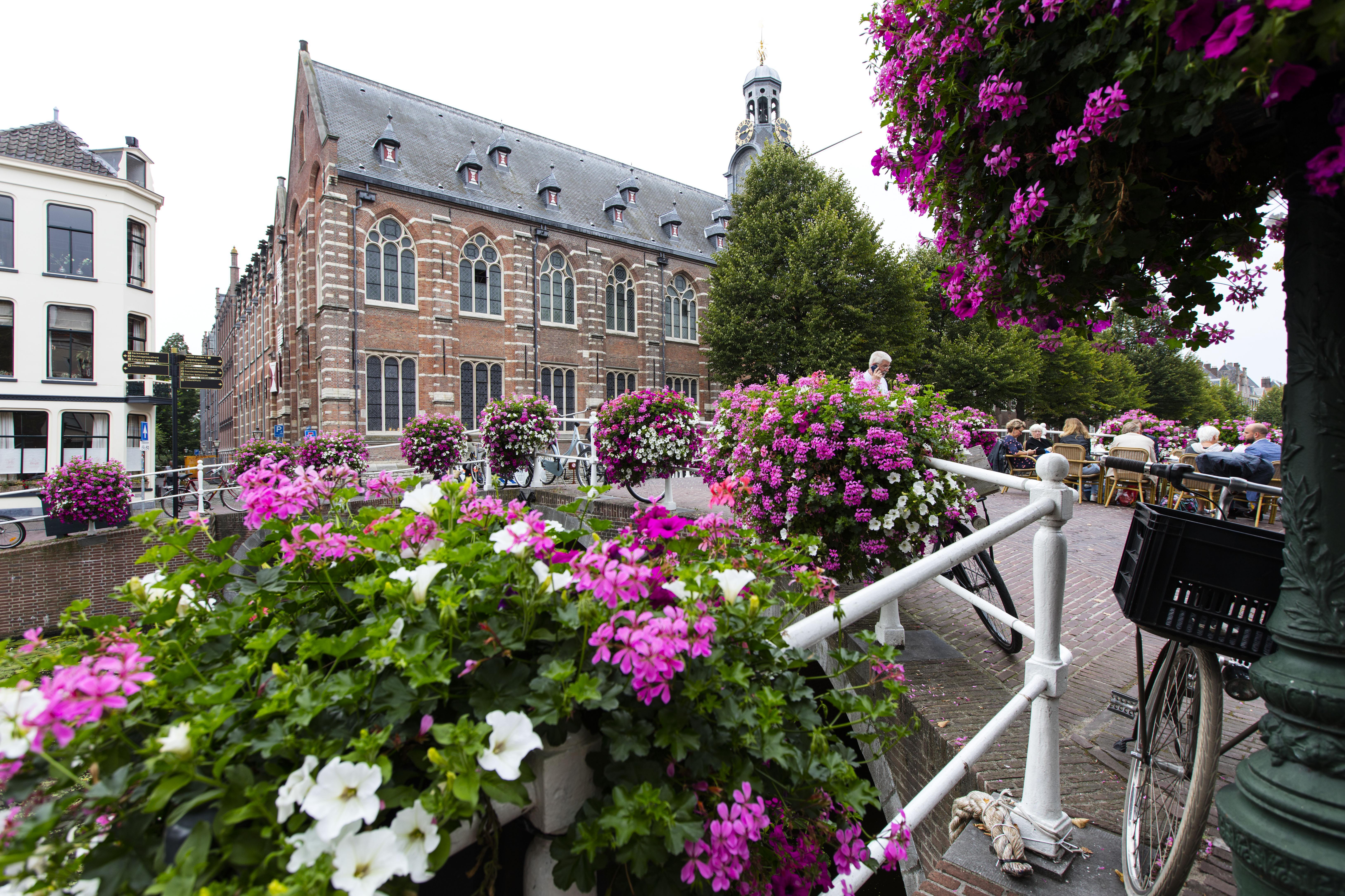 'Geen dip' in aantal aanmeldingen Universiteit Leiden