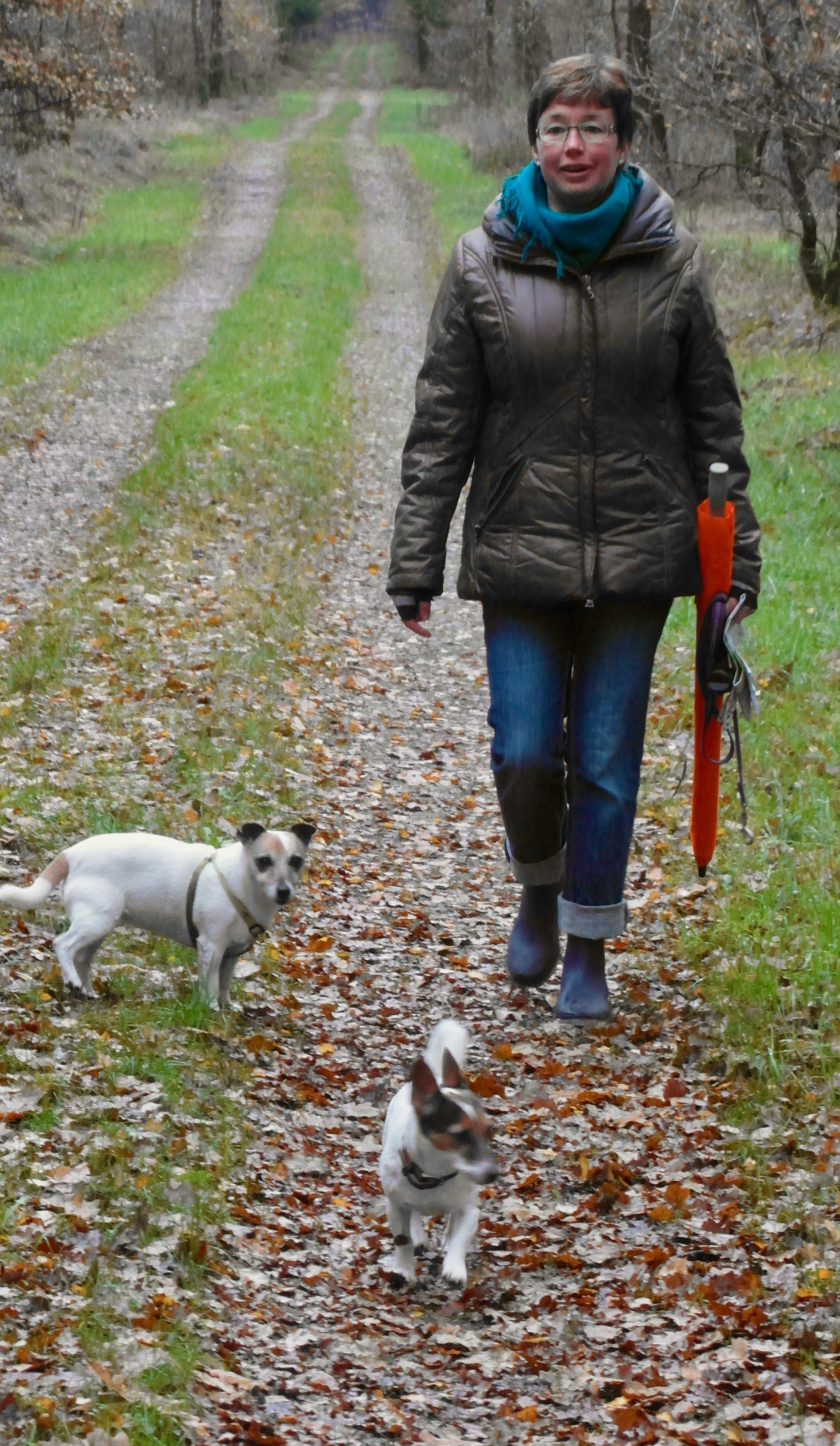Elke maand gratis wandeltocht van Stichting Gezond Natuur Wandelen Schagen
