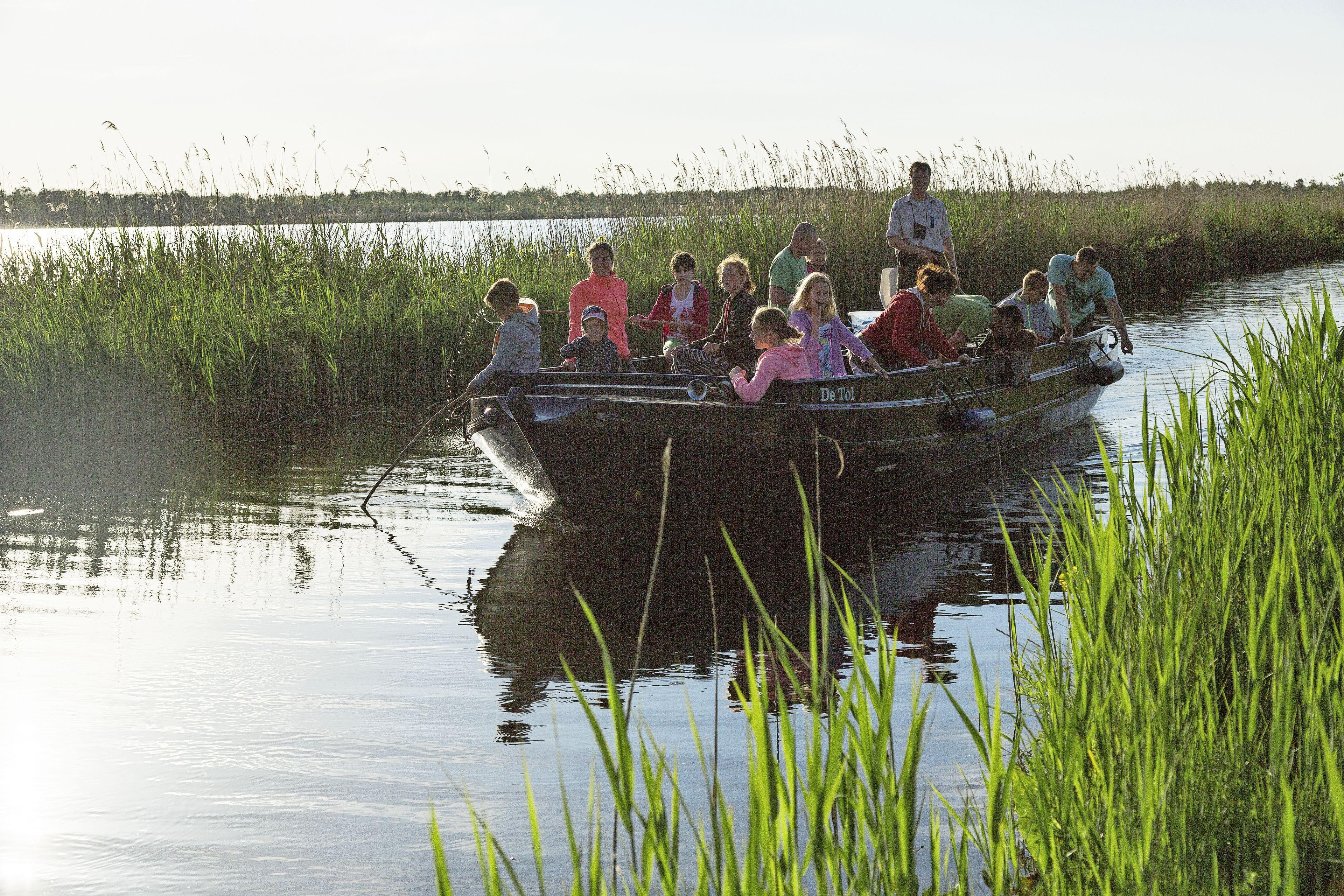 De aalscholverkolonie of historische eendenkooi in het Naardermeer kunnen weer bezocht worden; Natuurmonumenten start vaarexcursies op