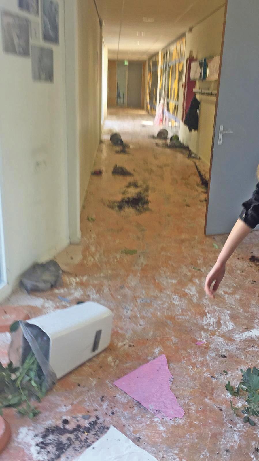 Ichthus Lyceum Driehuis treft maatregelen tegen examenleerlingen die tijdens stunt de school vernielden