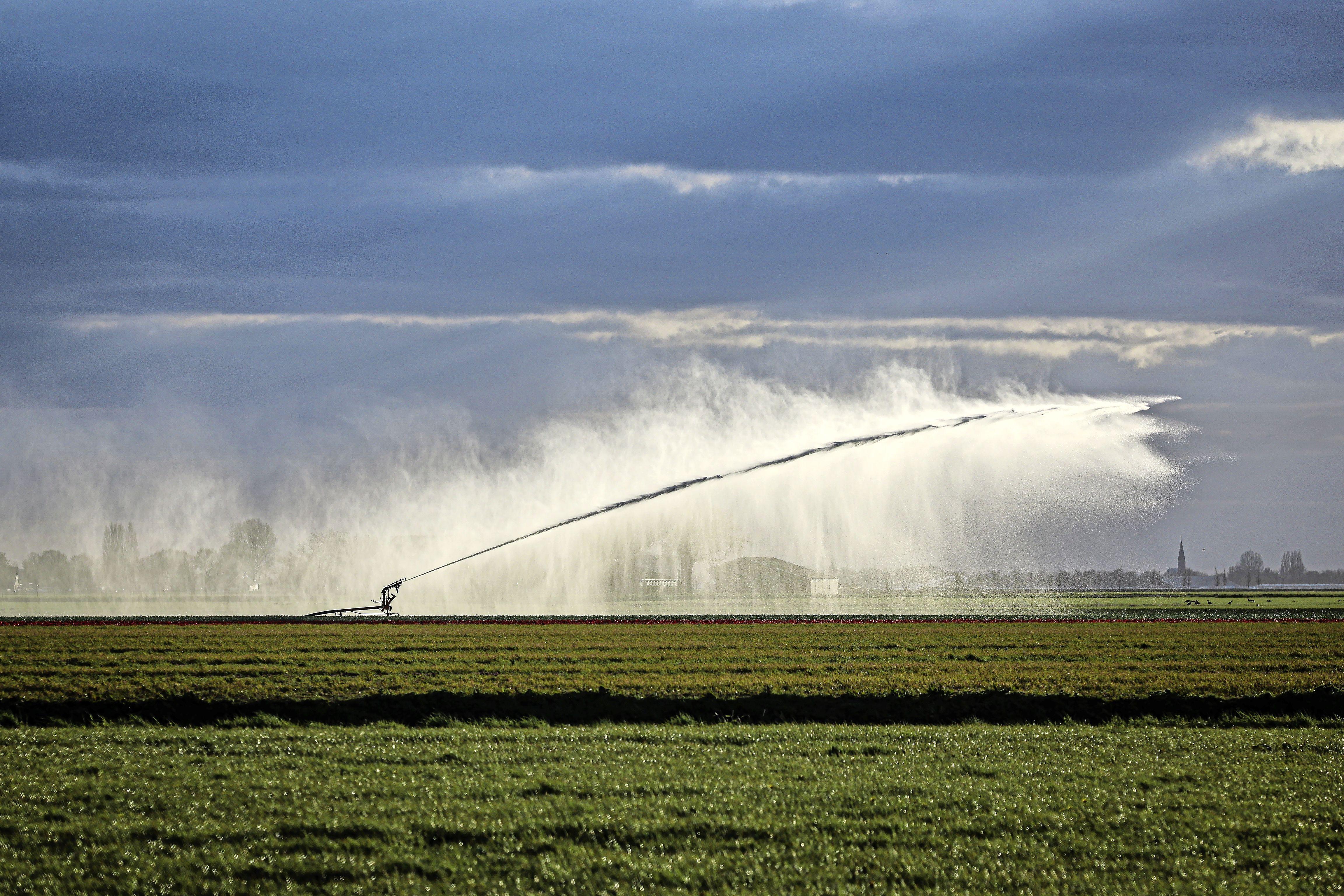 Is de droogte voorbij? Waterbeheerders zijn voorzichtig positief