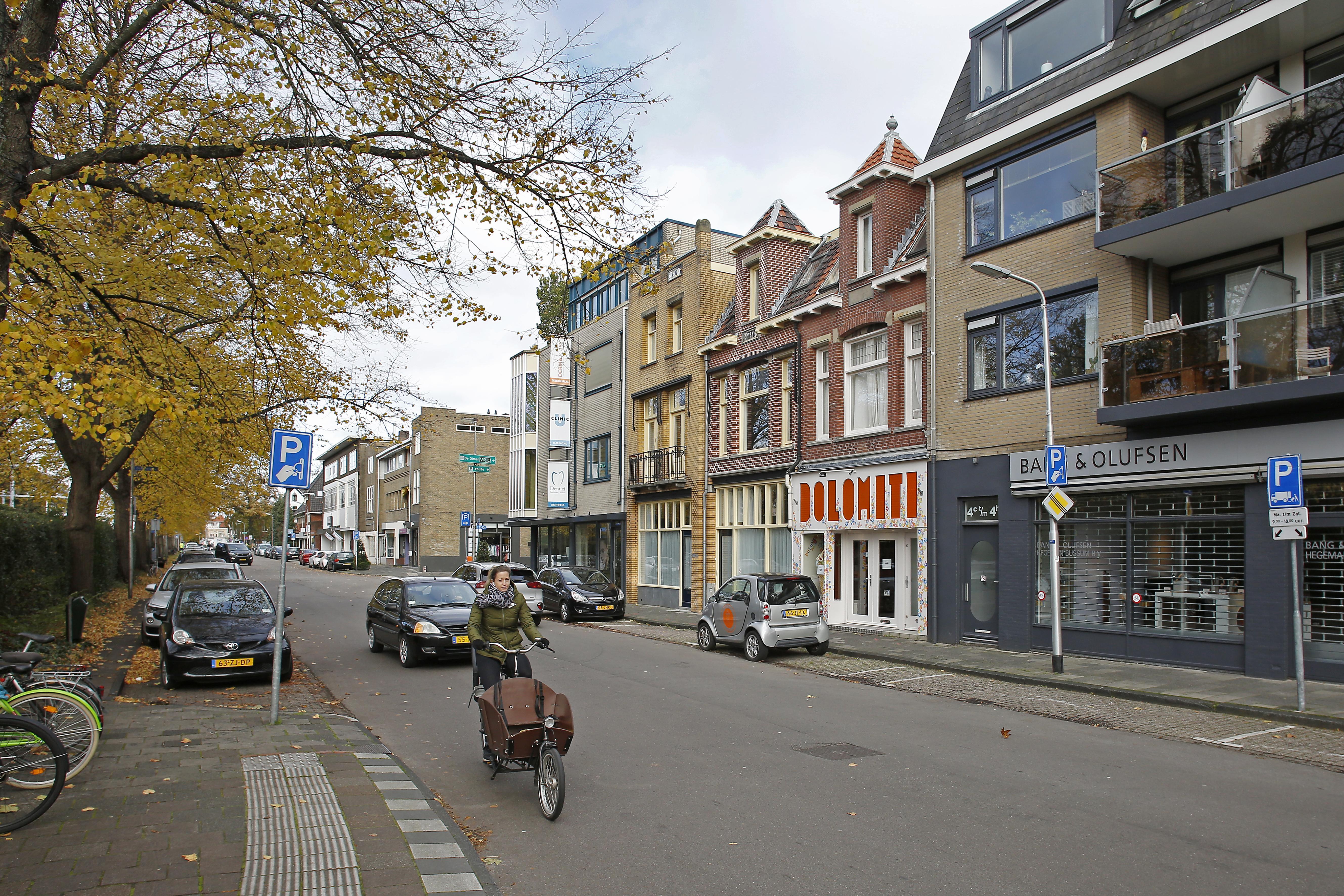 'Ouderwetse en strakke' lobby van ondernemers voor een andere herinrichting van de Vlietlaan in Bussum; groene middenberm is onaanvaardbaar