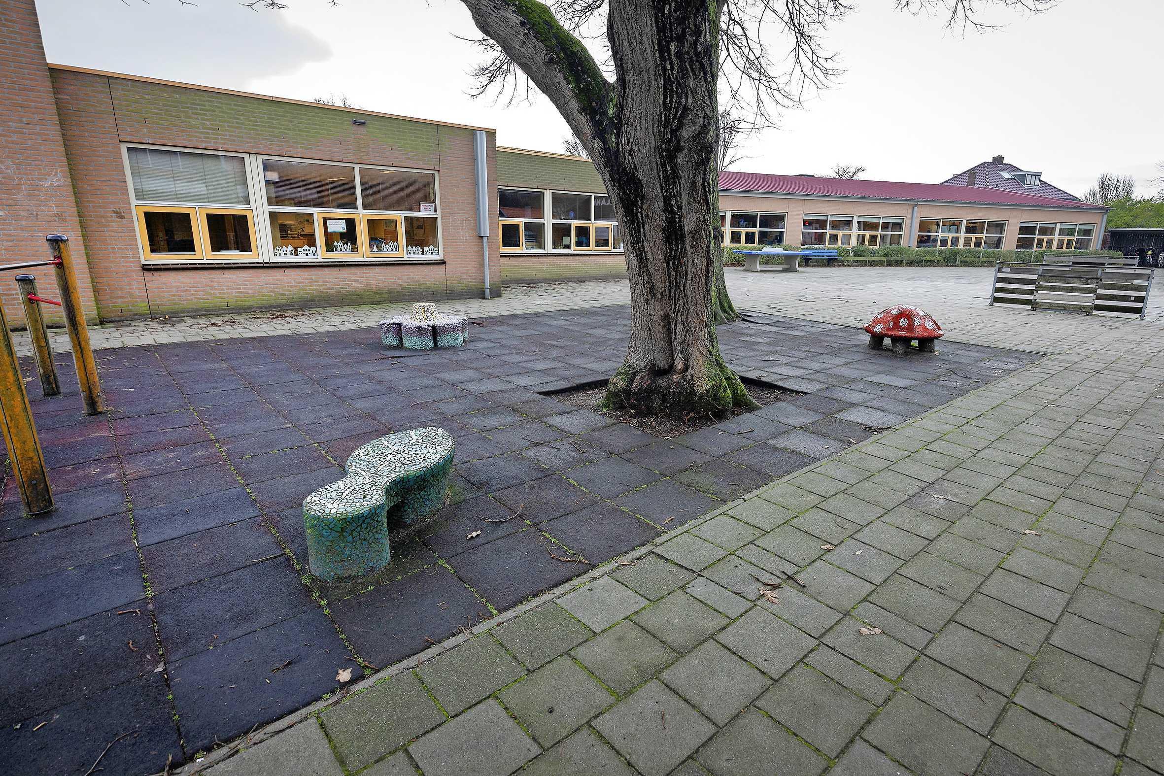 Tien basisscholen in Velsen willen nu een groen schoolplein: Pieter Vermeulen Museum helpt met een tienstappenplan en een werkboek