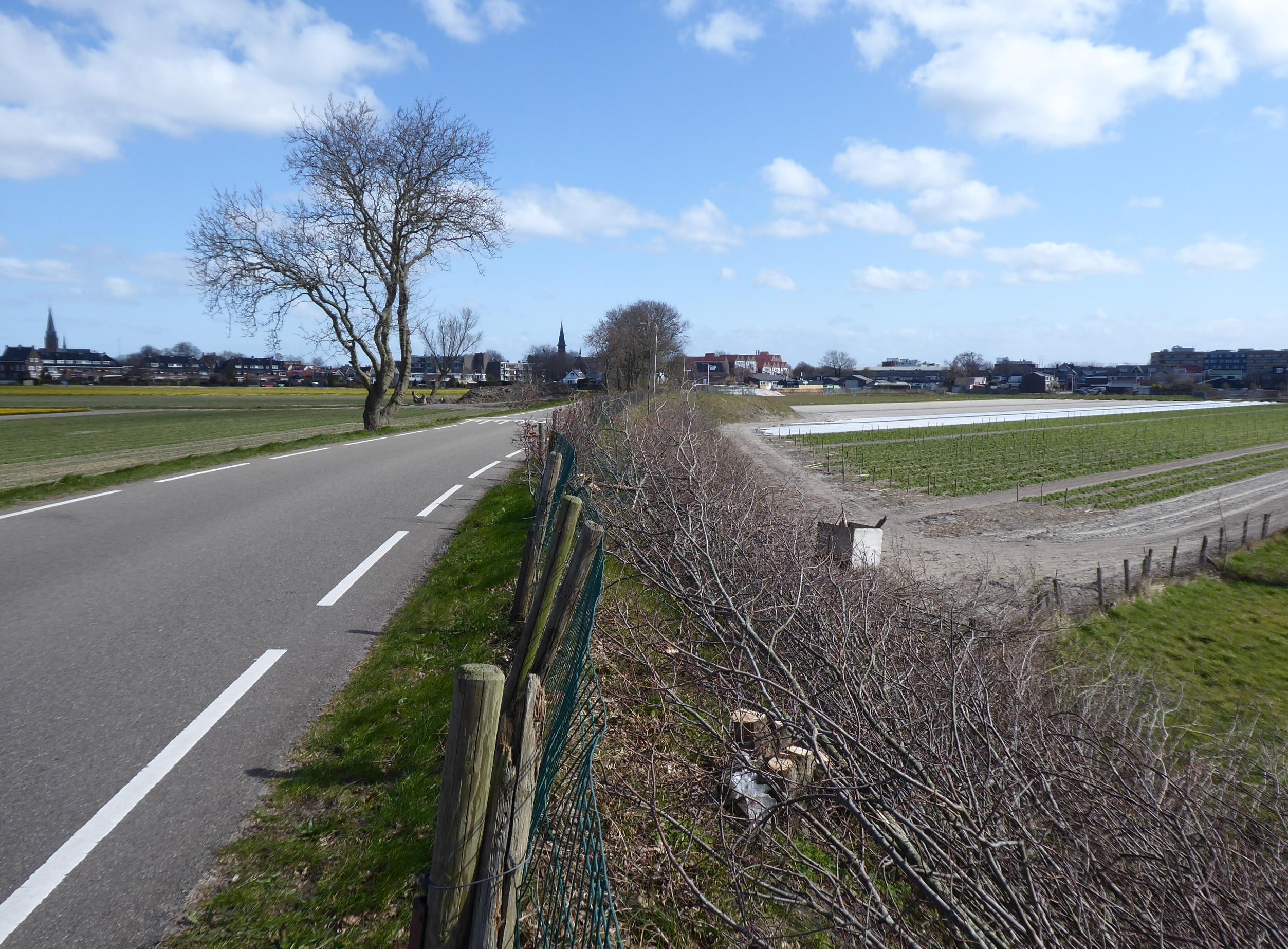 Protest tegen bouwplan aan Hillegomse Veenenburgerlaan: 'Dit is een aanslag op de schoonheid van de Bollenstreek'