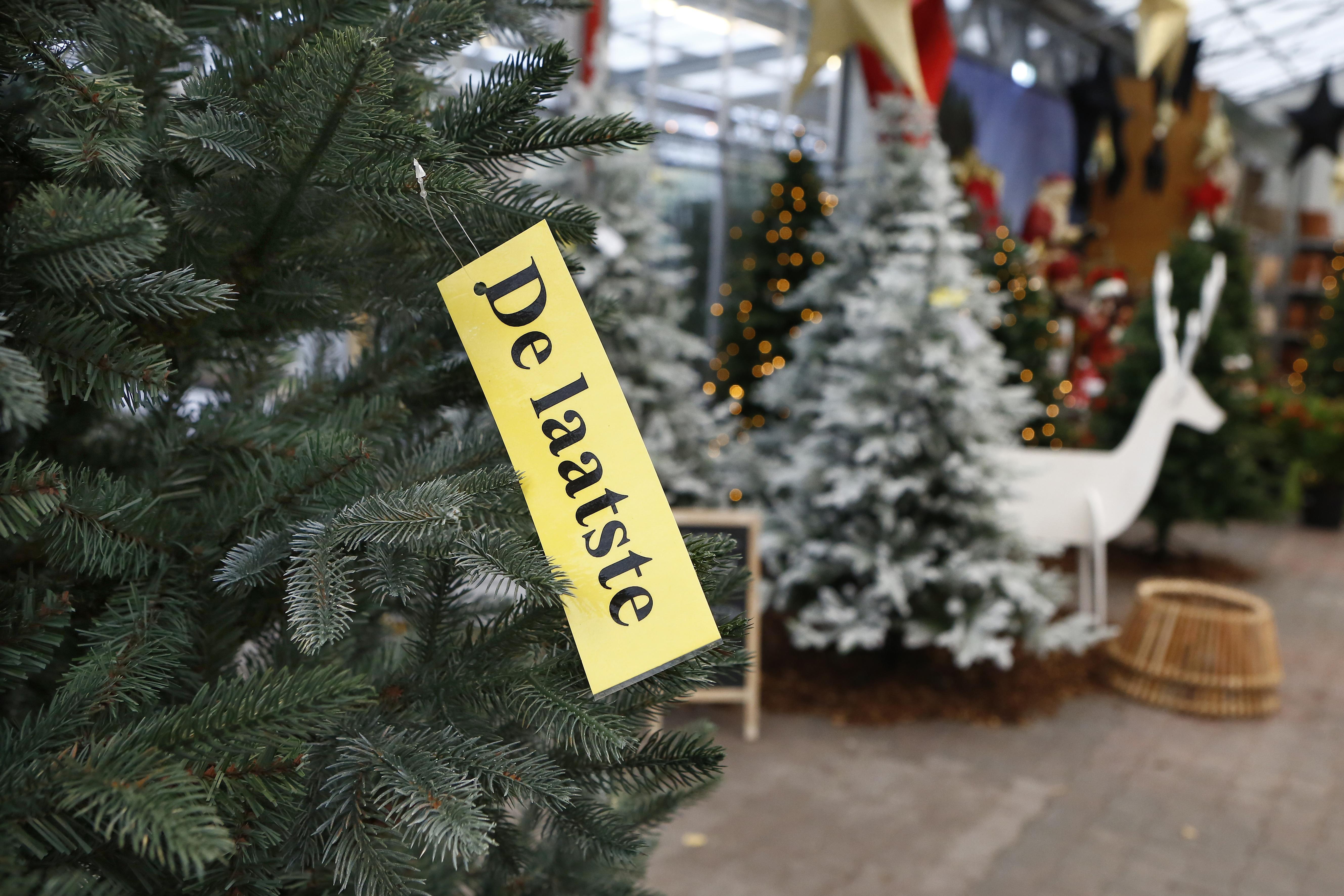 Kerstbomen vliegen de winkel uit. Bij Huizer tuincentrum Rebel doen vooral de kunstbomen het goed. 'Bij sommigen moeten we al 'nee' verkopen'