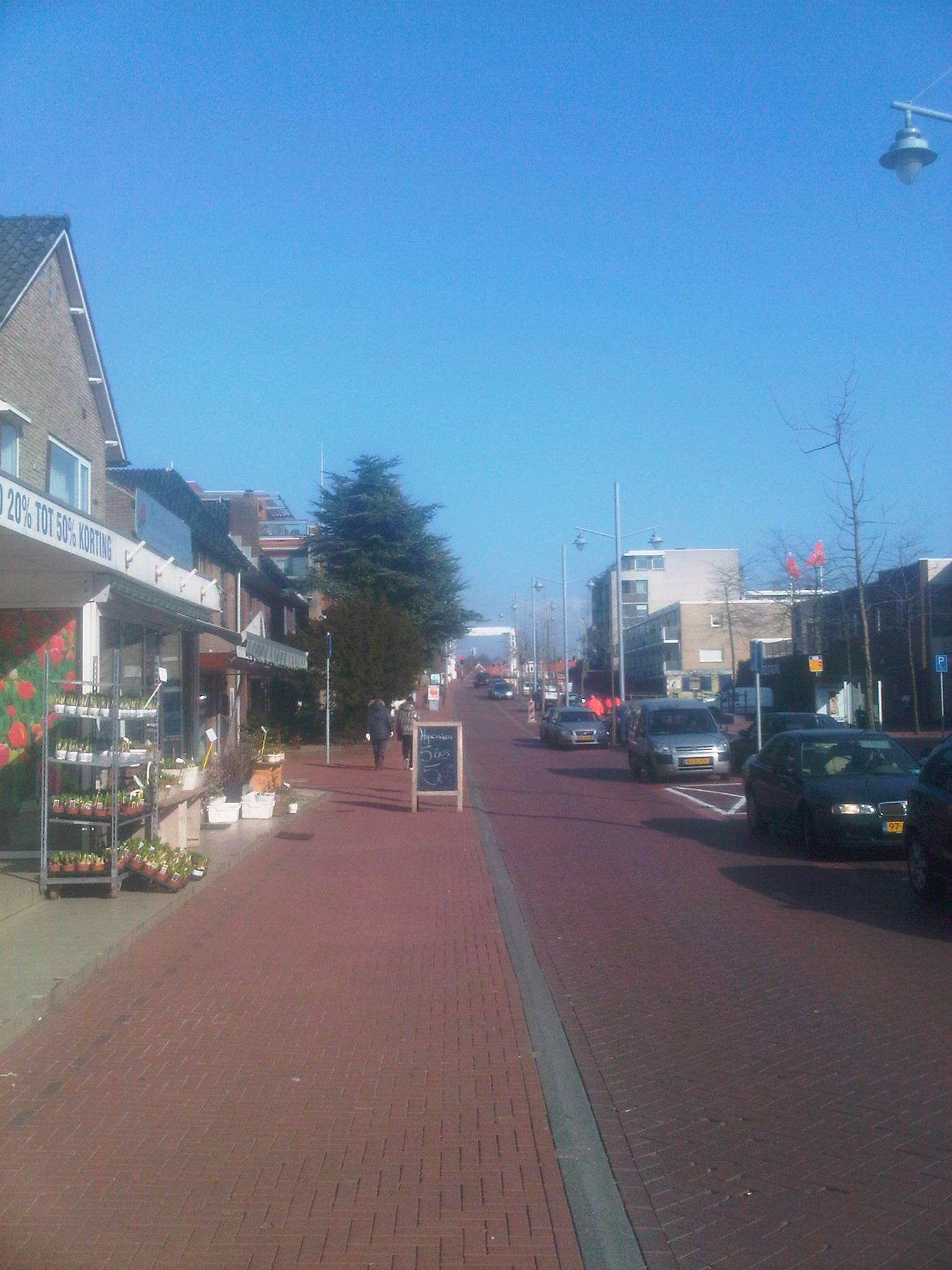 Dennenlaan in Zwanenburg gaat maanden op de schop