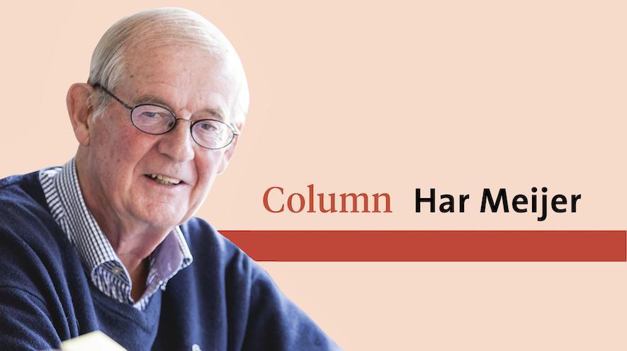 Onze belegen hersenpannen maken overuren bij de levenslessen van Herman van Veen   Column Har Meijer