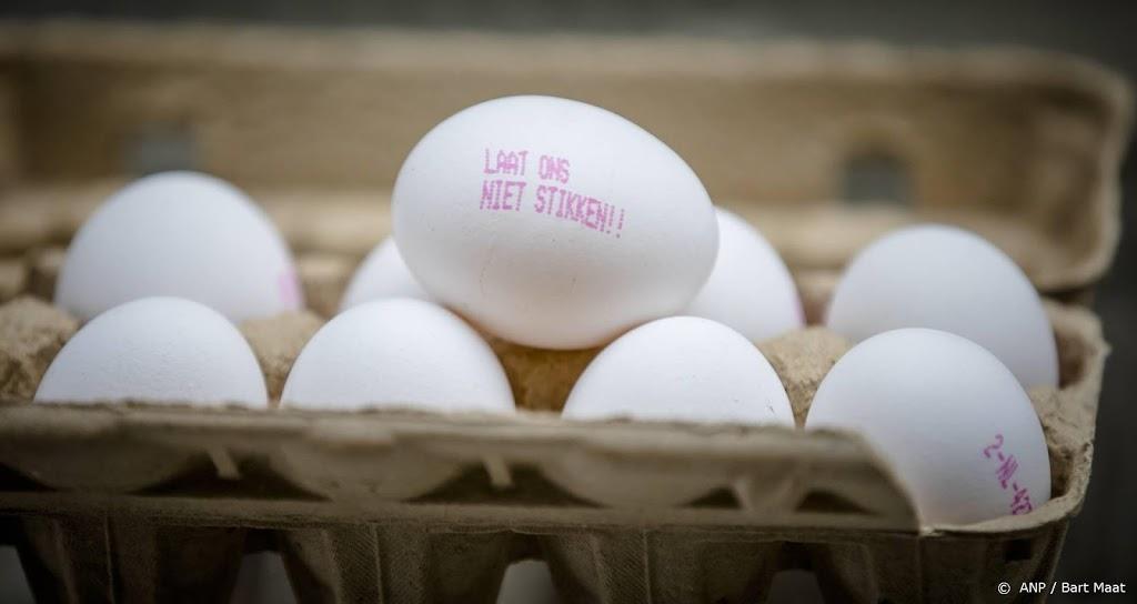 Hof doet uitspraak in fipronilzaak kippenboeren tegen staat