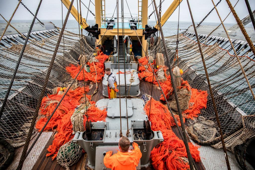 Steun voor vissers bij akkoordloze brexit