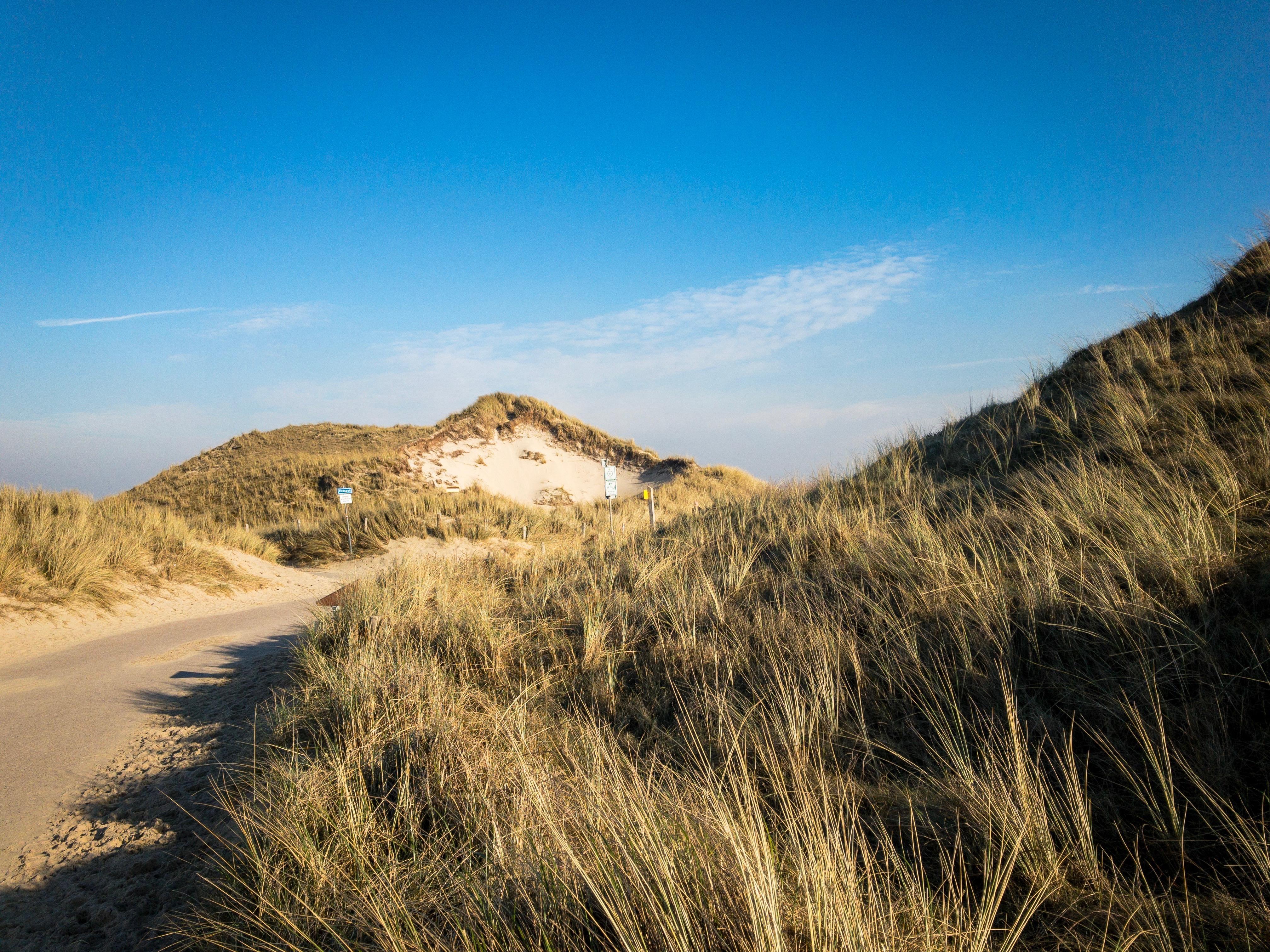 Vermiste man uit Aerdenhout gevonden in Voorschoten