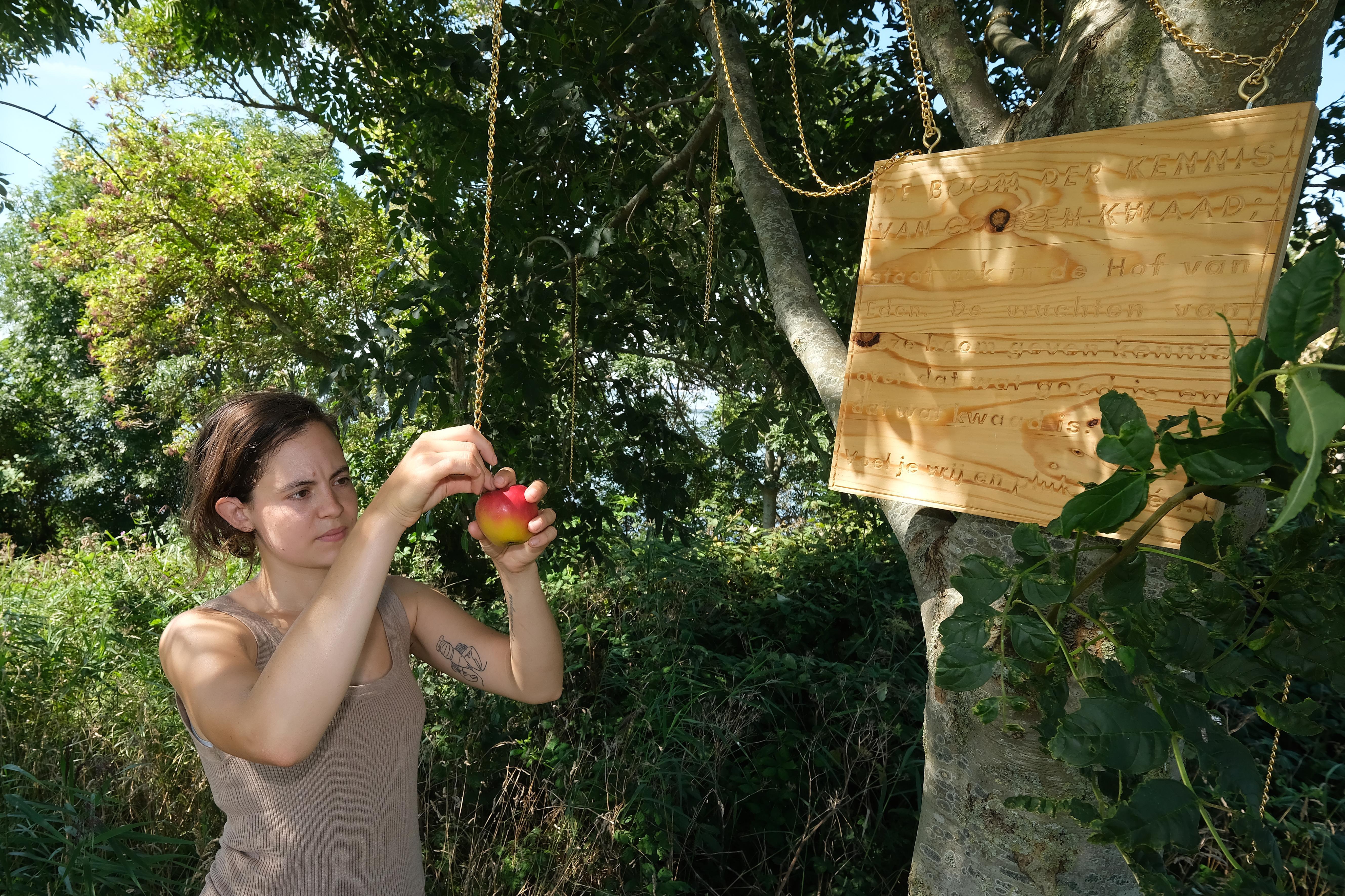 Met gras praten en een tropisch Europa ervaren; het kan bij het Klimaatmuseum op Pampuseiland