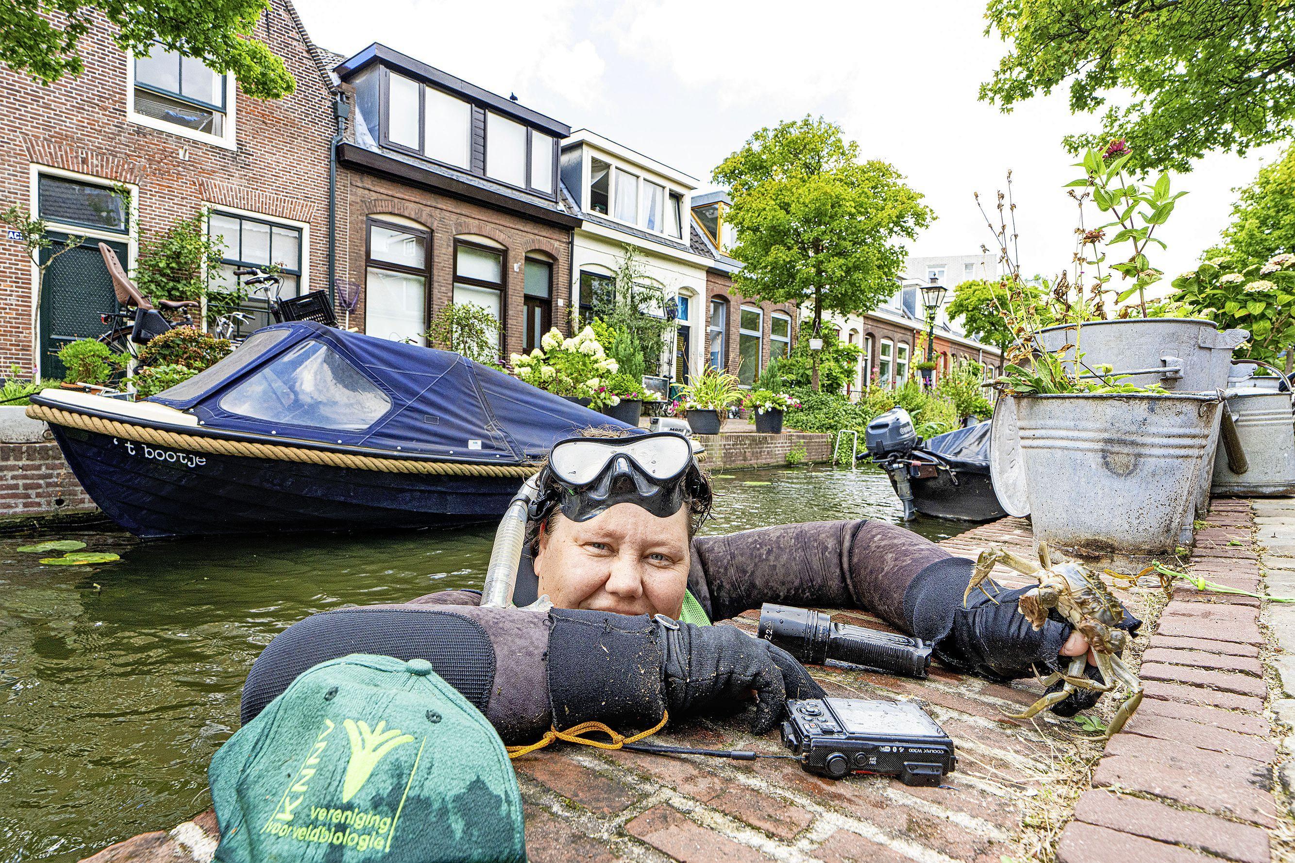 Stadssnorkelaar Aaf Verkade niet blij met magneetvistoerisme: 'Magneetvissen is in Leiden verboden, het verstoort de natuur'