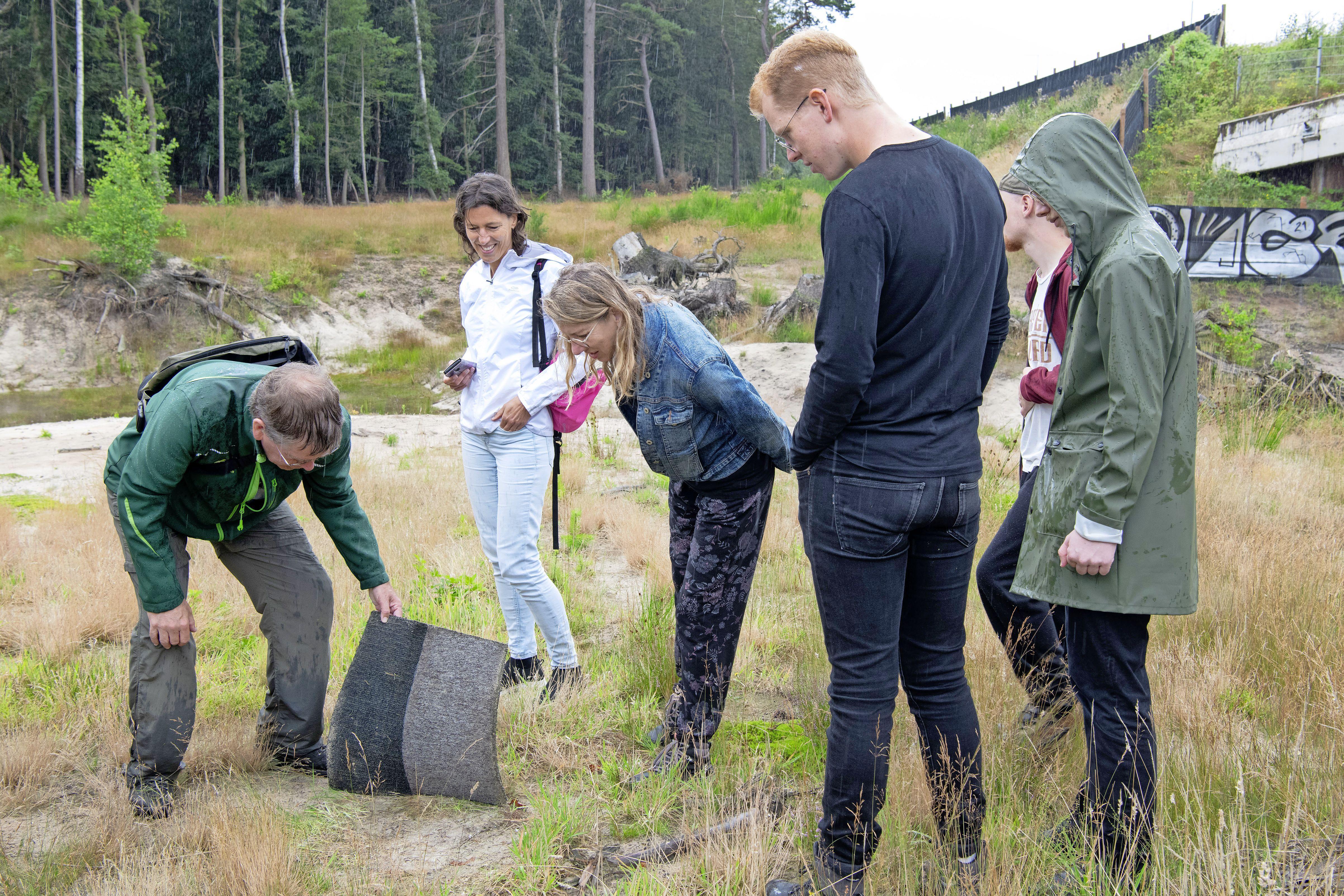 We gaan naar de faunatunnel Monnikenberg: Hilversumse ingrepen in de natuur om die natuur juist zijn gang te kunnen laten gaan