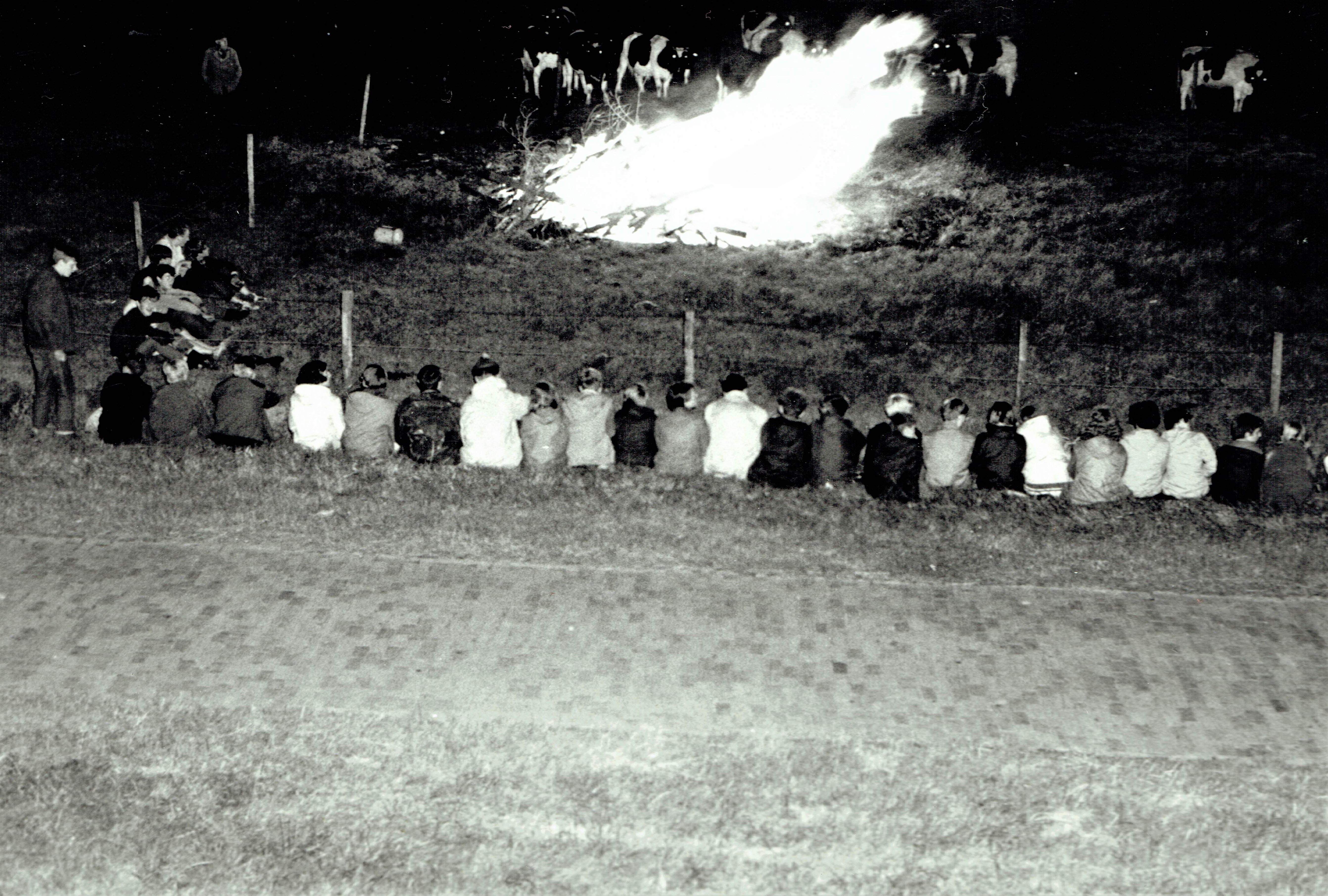 De zomer van 1968: lekker kamperen in de Velserbroekpolder | Velsen Vroeger