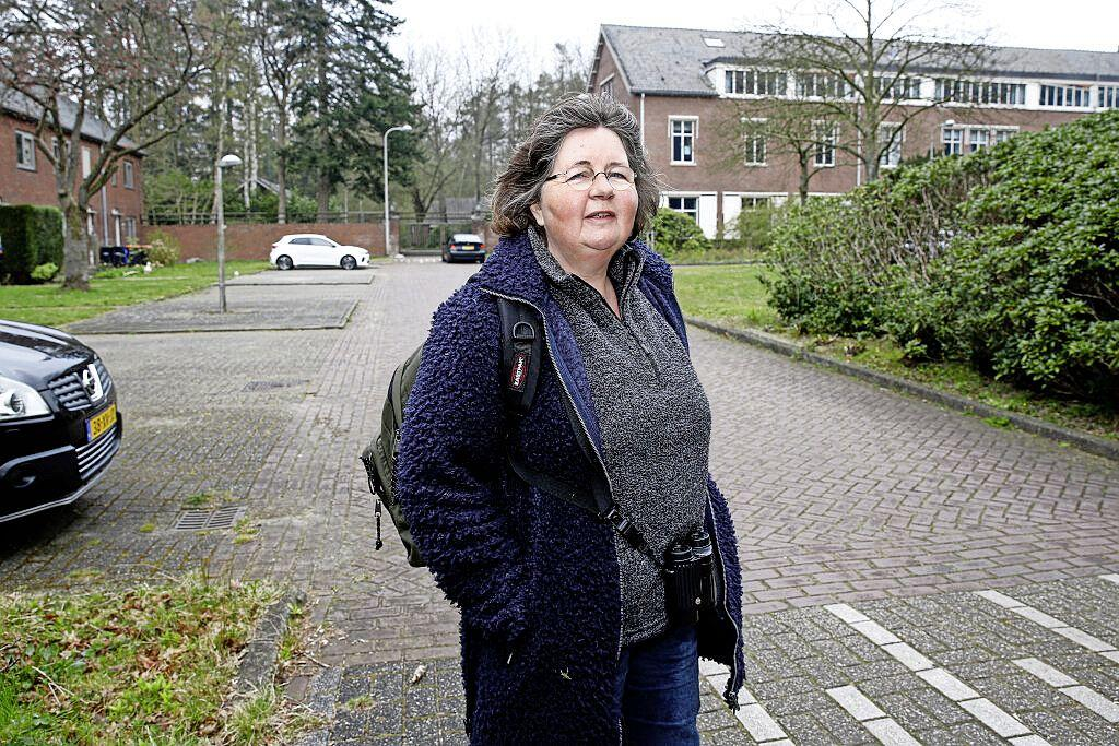 Baarnse in voetspoor van prinses Irene met strijd voor ander bosbeheer in Nederland; 'Huisdieren in Borreboswijkje? Katten eten de gekraagde roodstaart op'