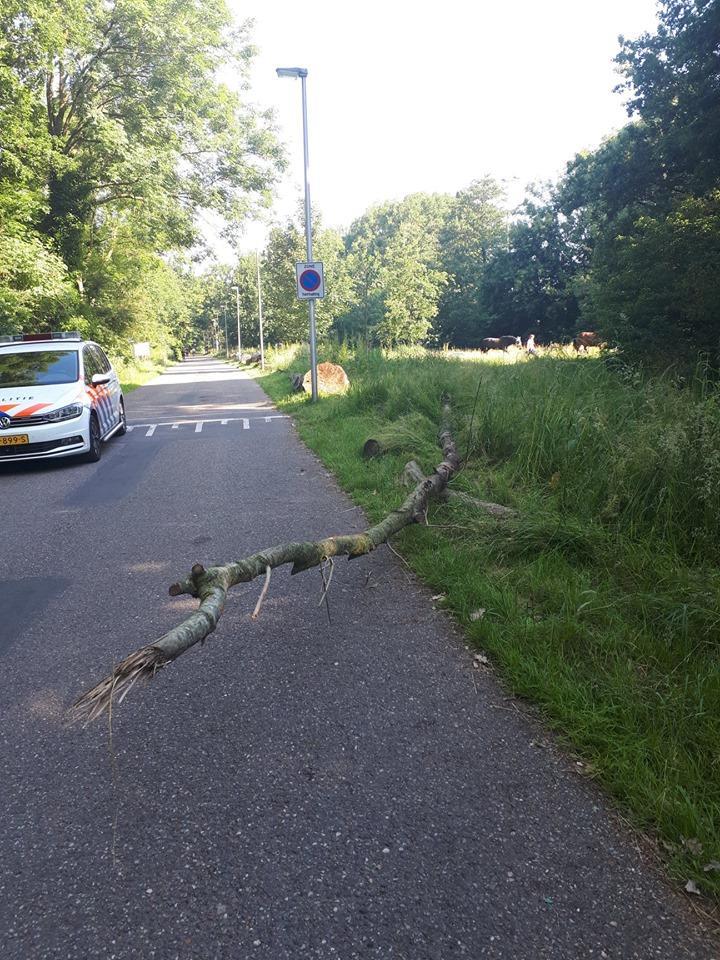 Man uit Hoogmade gewond bij botsing tegen boomstam die moedwillig is neergelegd