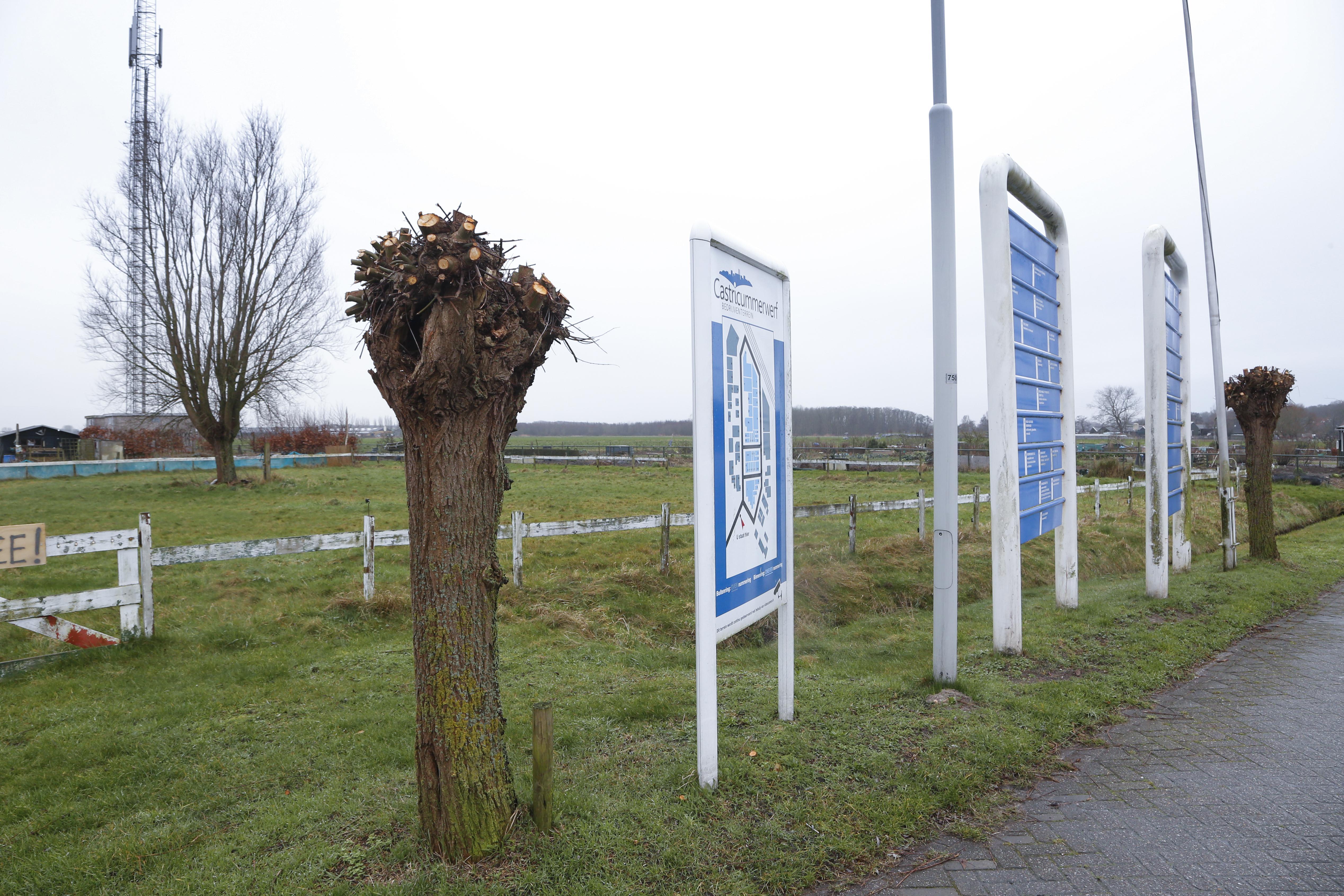 Het verzet tegen containerwoningen op bedrijventerrein Castricummer Werf lijkt vergeefs. De raad wikt, maar het college beschikt