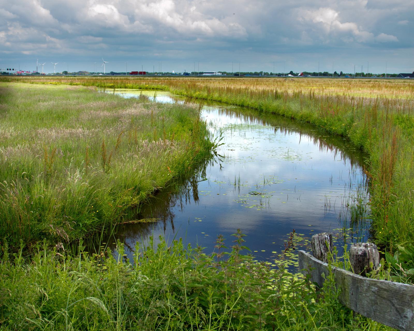 Uit onderzoek Deltares gaat blijken: natuur IJsselmeer is gebaat bij aanleg Kor Buitendijks 'zonneatollen'