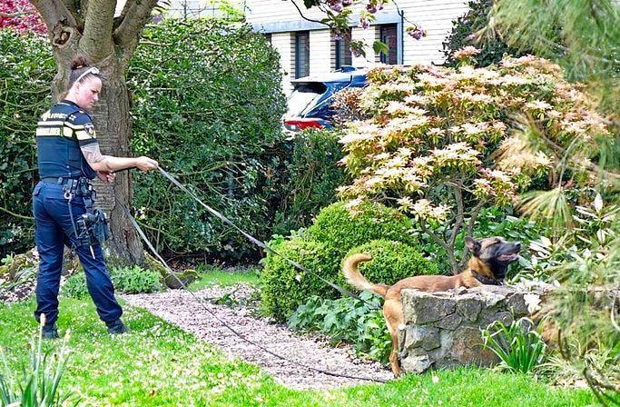 Politie zoekt met speurhond naar dader van woninginbraak in Bergen