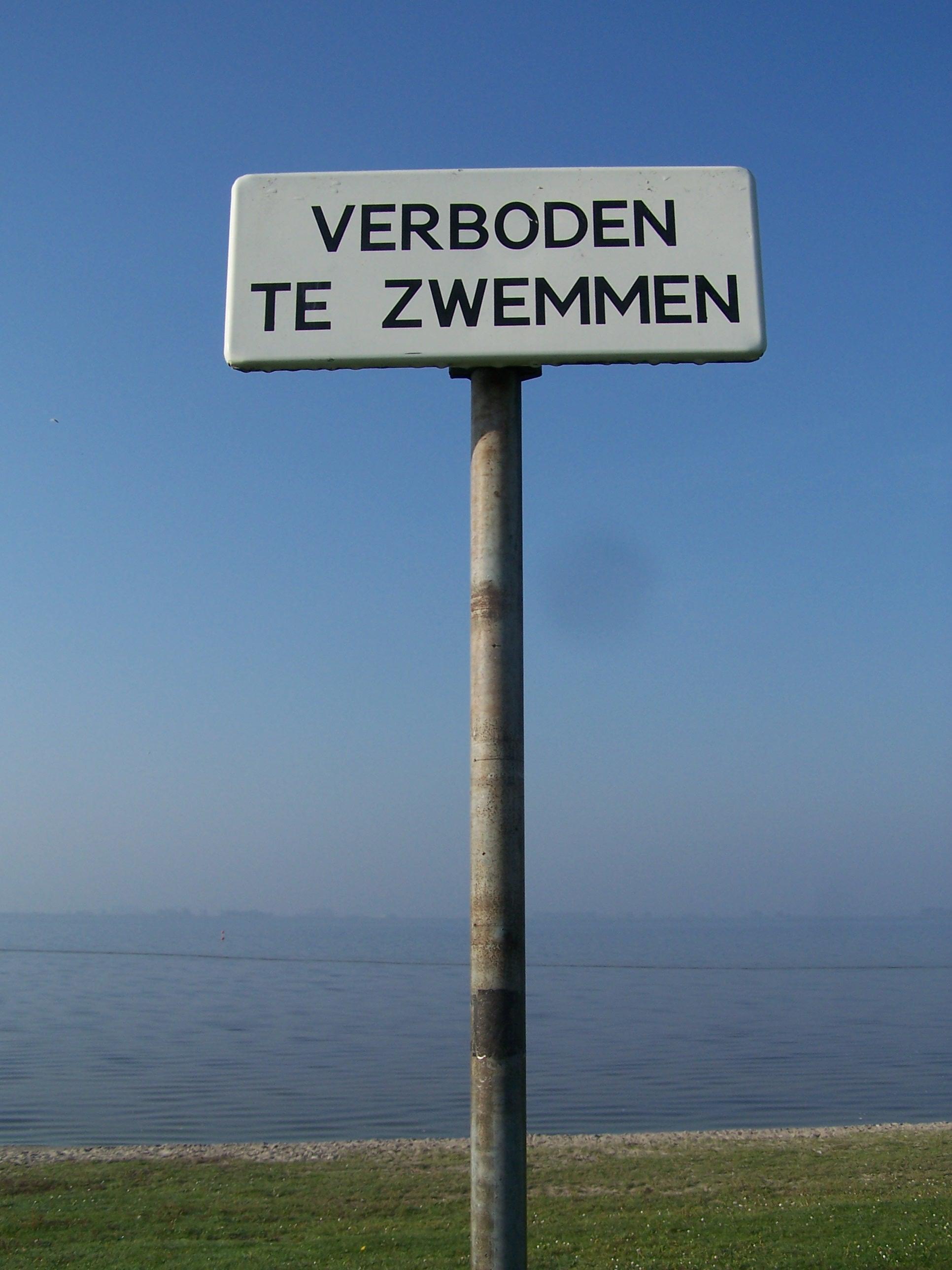 Niet zwemmen bij Lutjestrand want er is blauwalg aangetroffen
