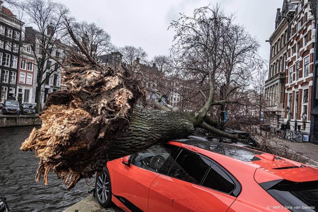 Tientallen meldingen van stormschade
