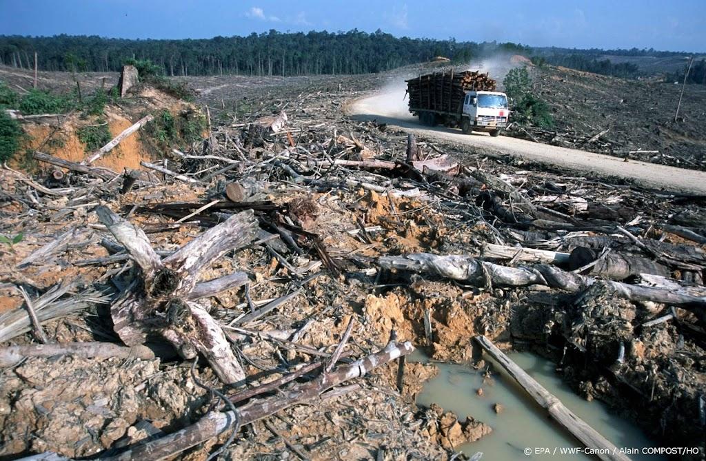 NASA maakt waarschuwingssysteem voor ontbossing regenwouden