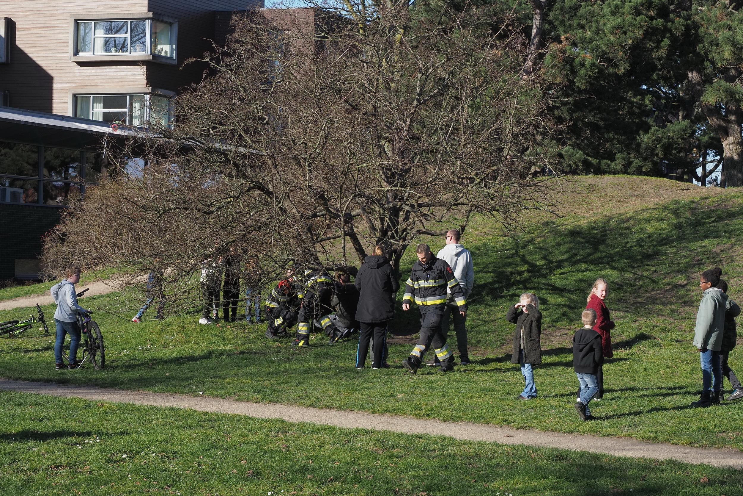 Brandweer in actie voor klemgeraakte boomklimmer in IJmuiden