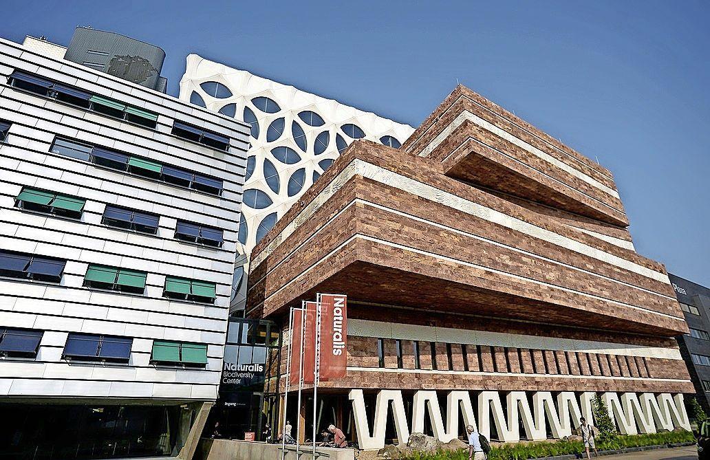 CDA wil weten waarom culturele instellingen in Leiden niet meedoen aan proefopenstelling