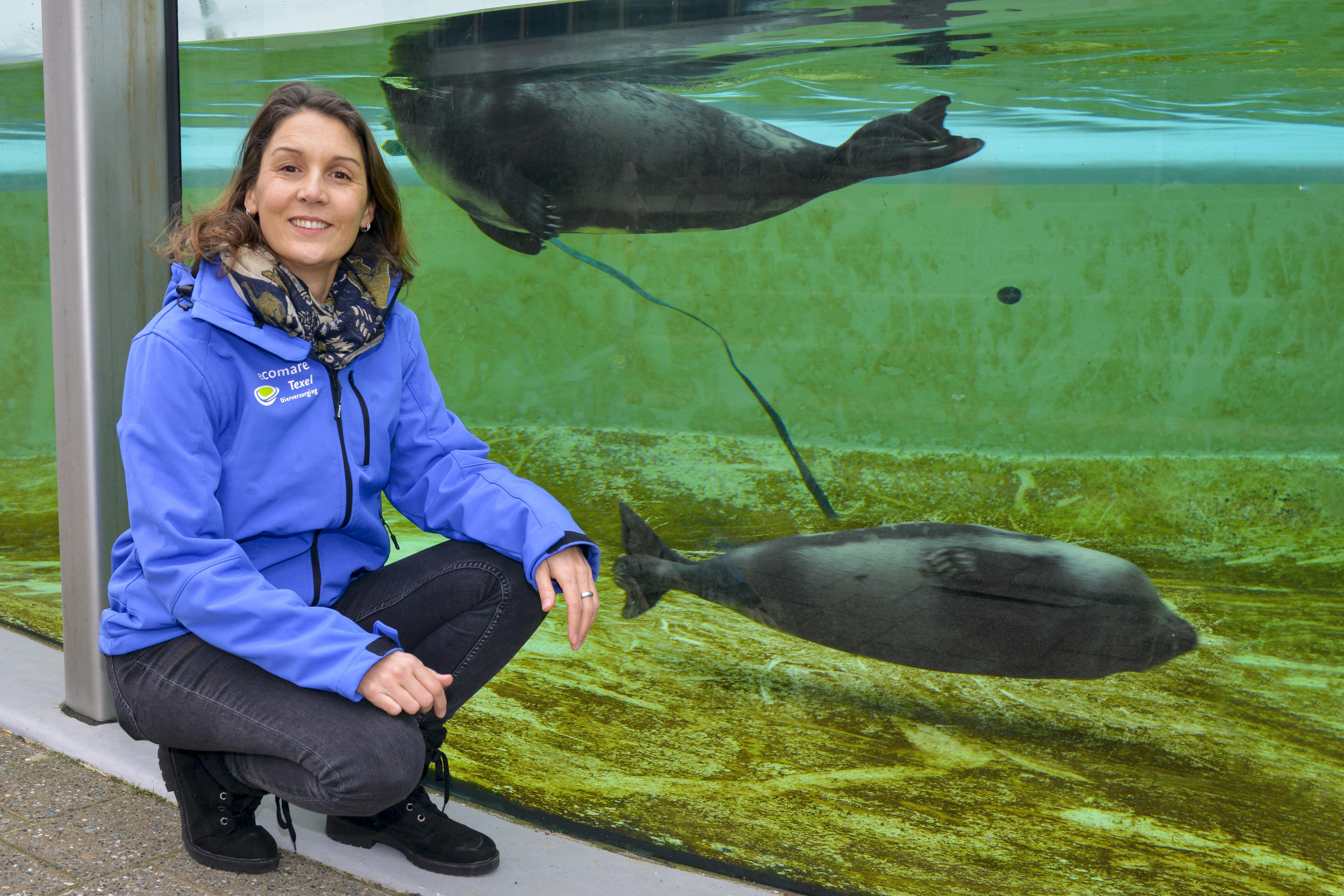 Van de olifanten in Vietnam naar de zeehonden op Texel. Dionne Slagter vindt het fantastisch bij Ecomare!