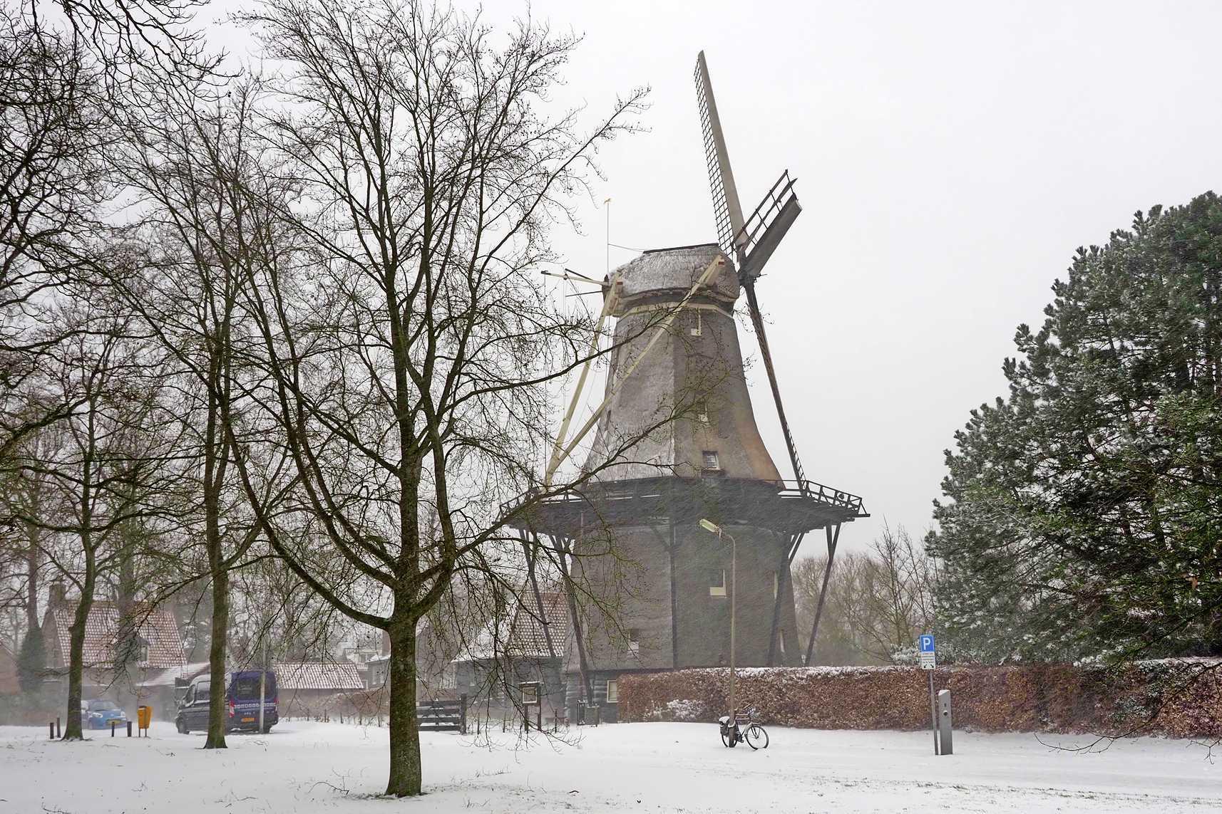 IJmond in een winterkleed, sneeuwfoto's van lezers