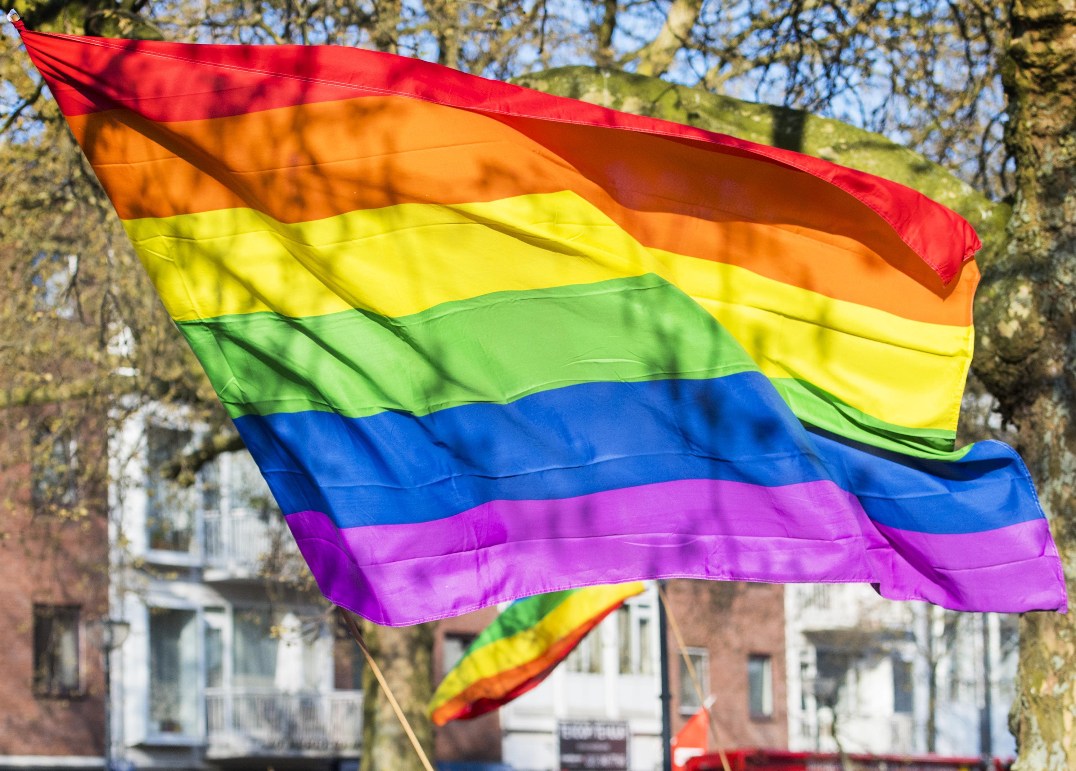 Baarn en Soest hijsen regenboogvlag tijdens interland Nederland-Tsjechië in Boedapest, als protest tegen Hongaarse 'anti-homowet'