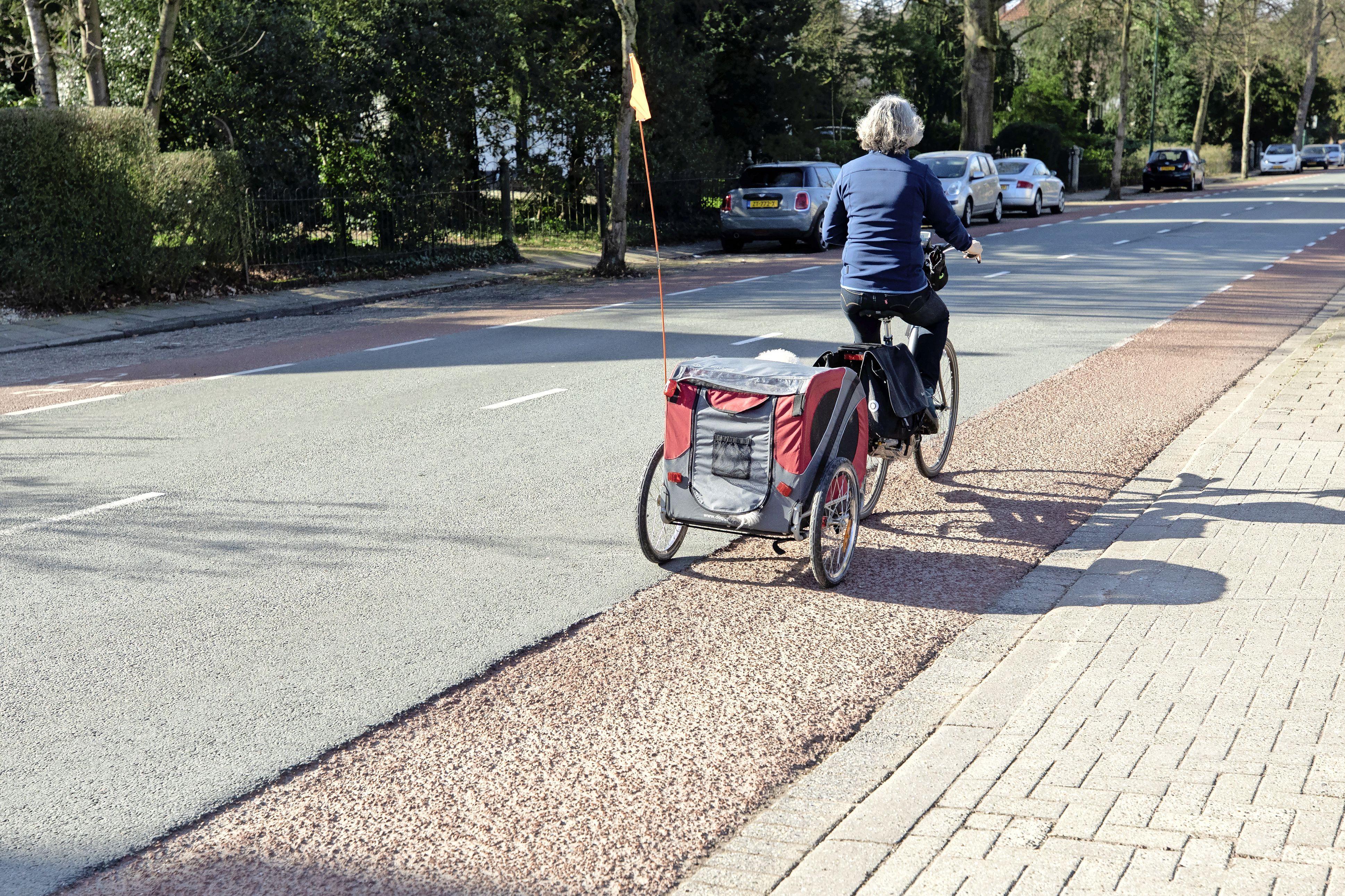 Vorstschade aan Baarnse fietspaden; Kleine gaten worden nog deze week gerepareerd, voor de grote schade is een aannemer nodig