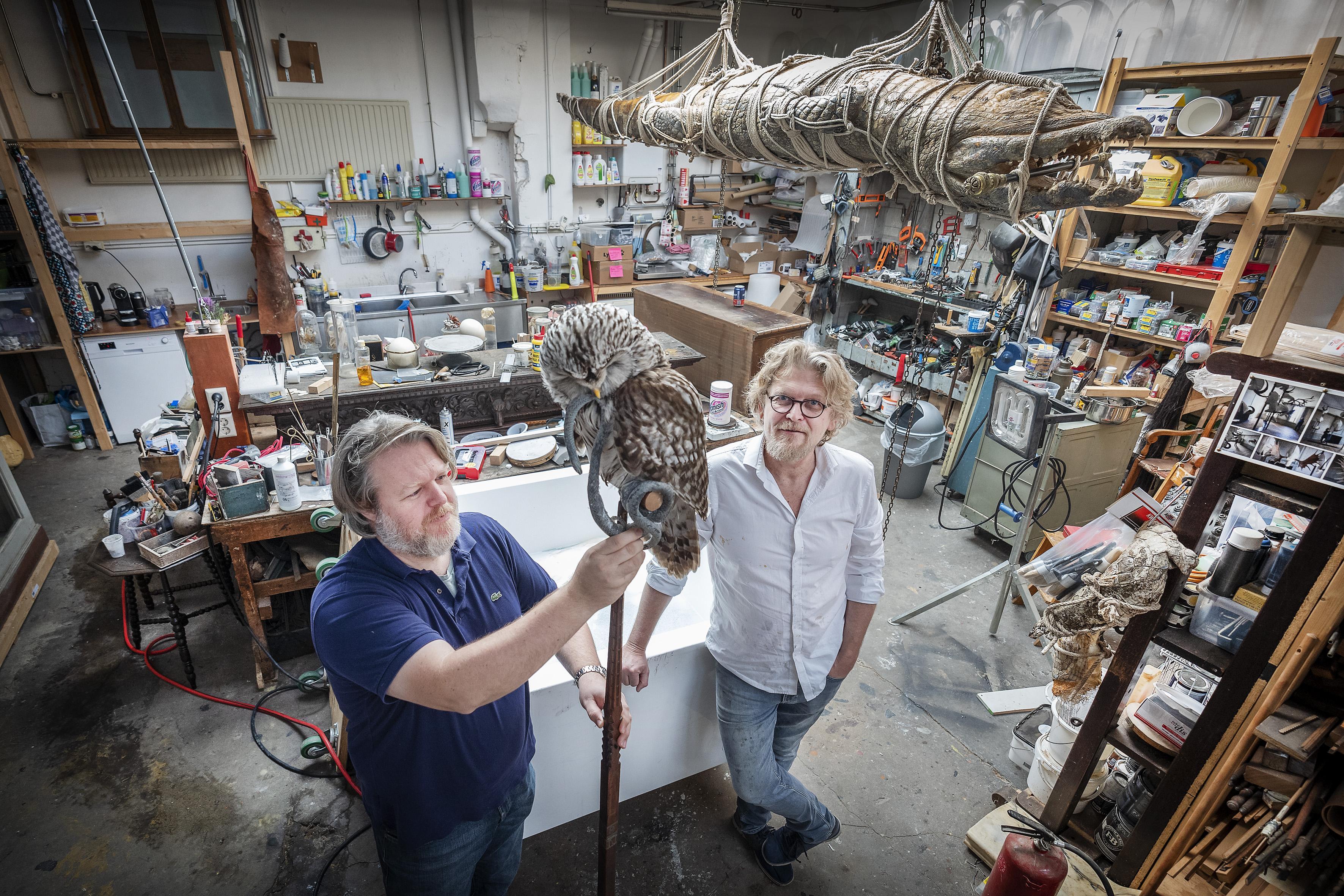 Haarlemse taxidermisten Sinke en Van Tongeren: 'Iemand bood ons de opgezette butler van zijn overgrootmoeder aan in ruil voor een van onze werken'