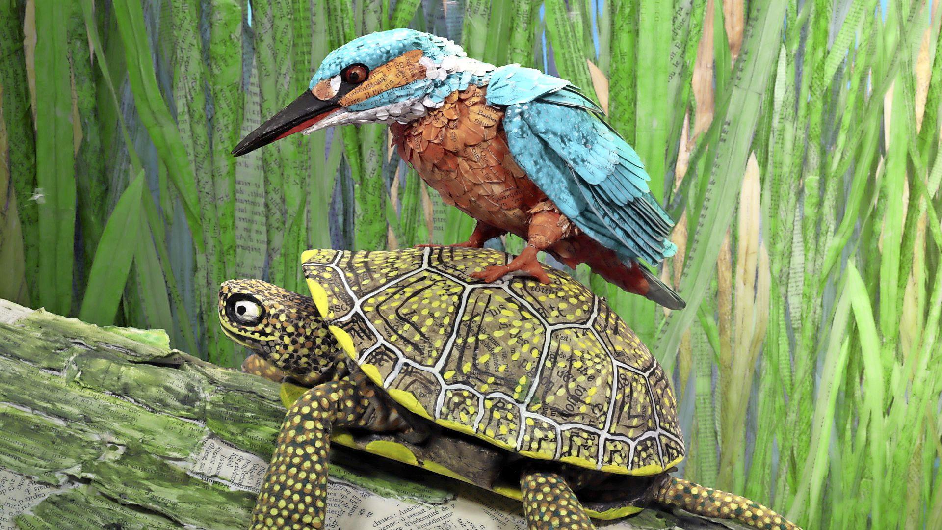 Waterdieren ontdekken in de Rietkreek met film, safari en Voorleesfeest