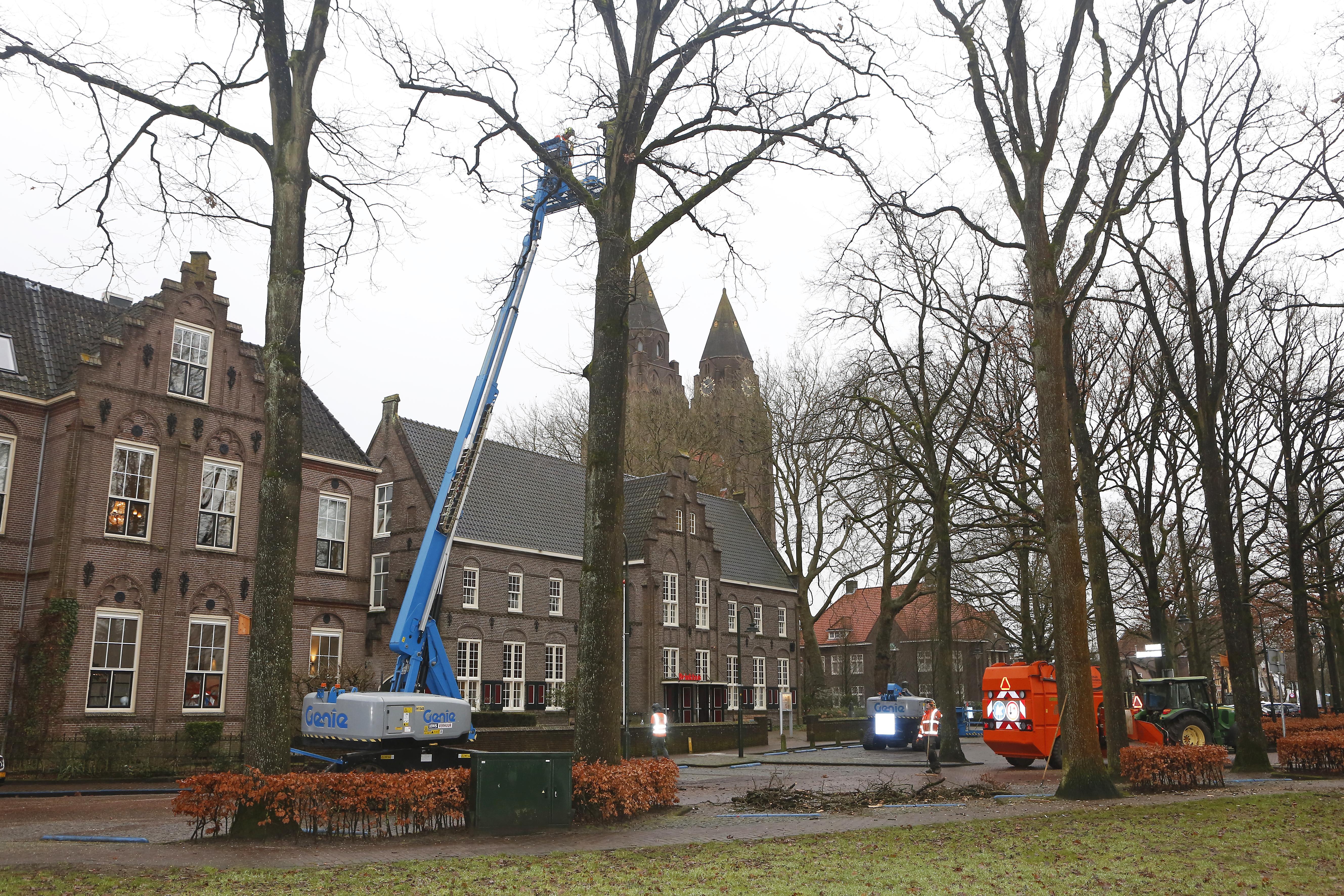 Snerpend zaaggeluid op de Brink in Laren: snoeiwerk is begonnen