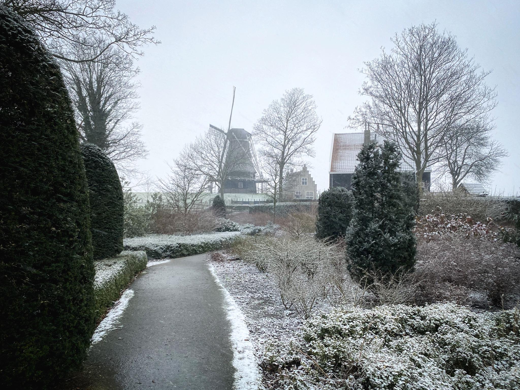 De eerste sneeuw van 2021, bekijk hier de foto's