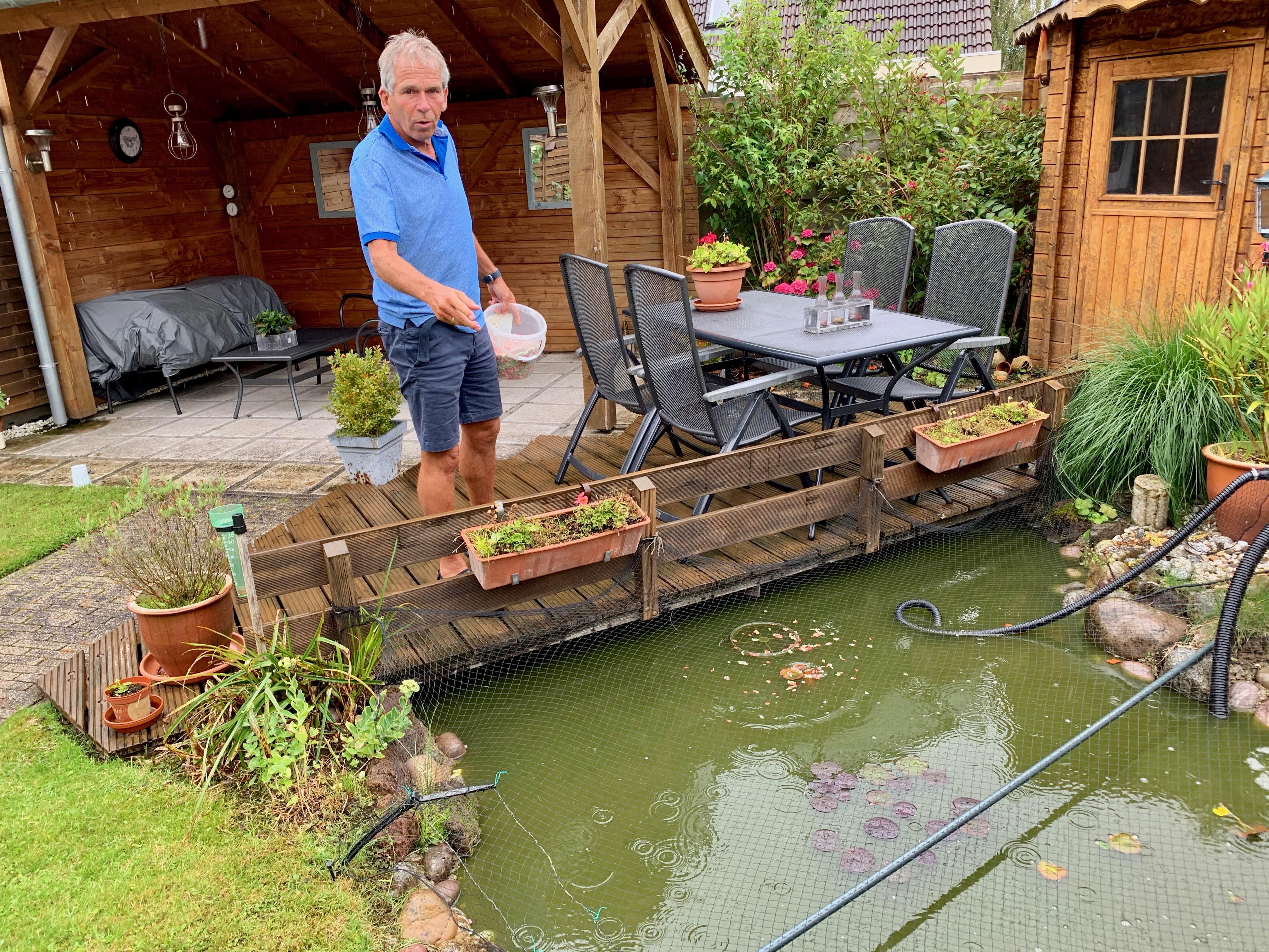 Volop Hoogkarspelse tuinvijvers als 'onderduikadres' voor overschot aan goudvissen