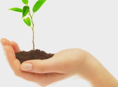 Rapport rekenkamer Heemstede: iedereen vindt duurzaamheid belangrijk, maar budget, menskracht en sturing ontbreken veelal