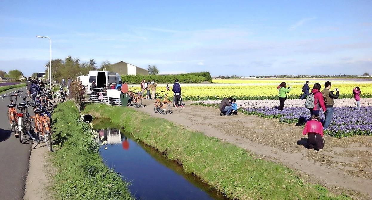 Streep door woning aan Zilkerbinnenweg in De Zilk: gemeenteraad wil landschap open houden