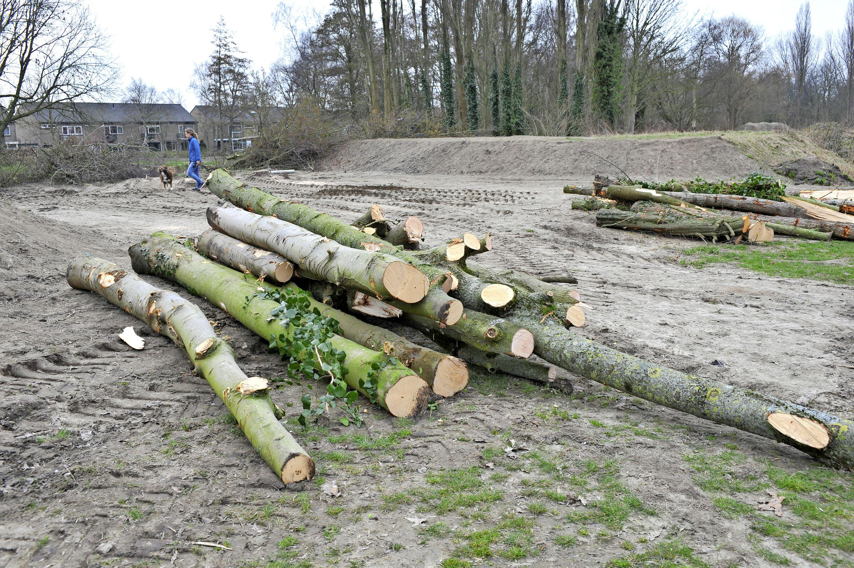 Het kappen van het resterende groen op De Velst in Heemskerk start maandag. Een petitie voor herplanting is in een paar dagen al 400 keer ondertekend